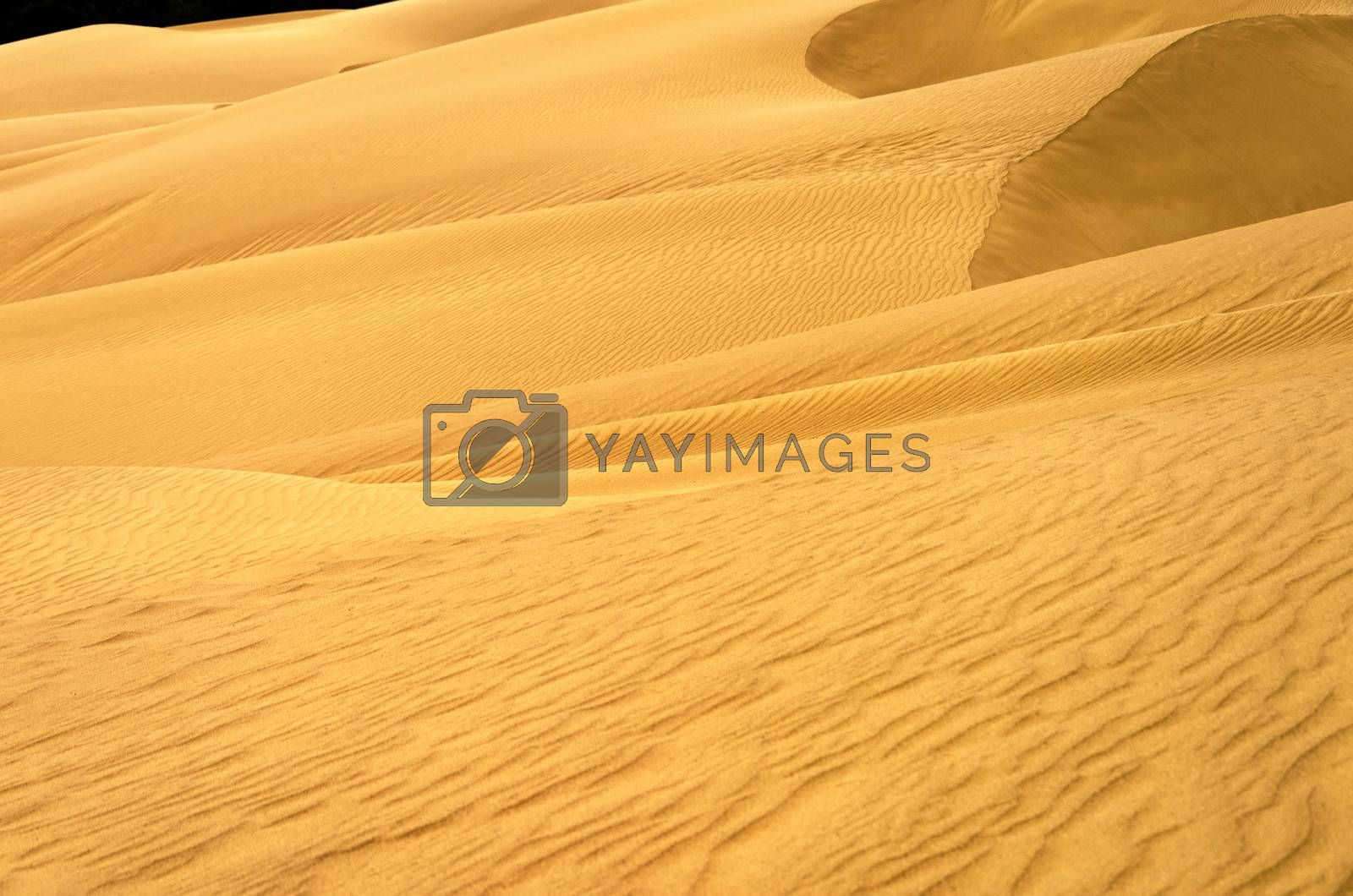 View of a sand dune in Macuira National Park in La Guajira, Colombia