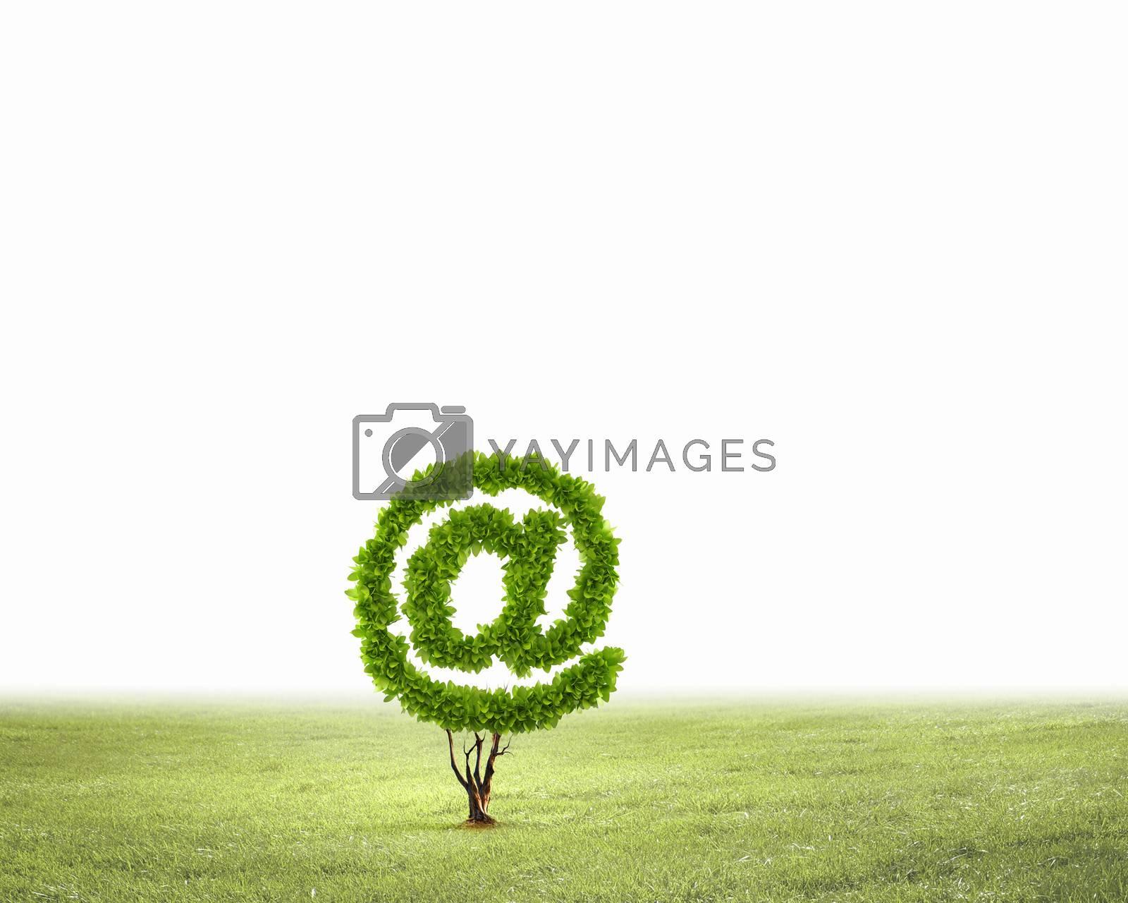 Image of plant shaped like at symbol
