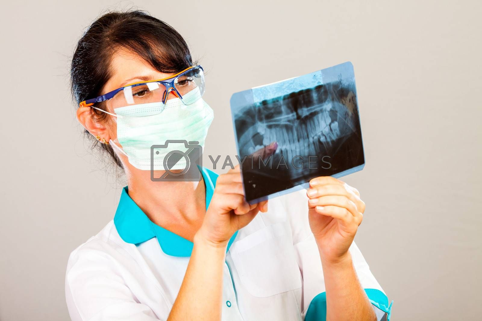 Dentist with xray on gray background