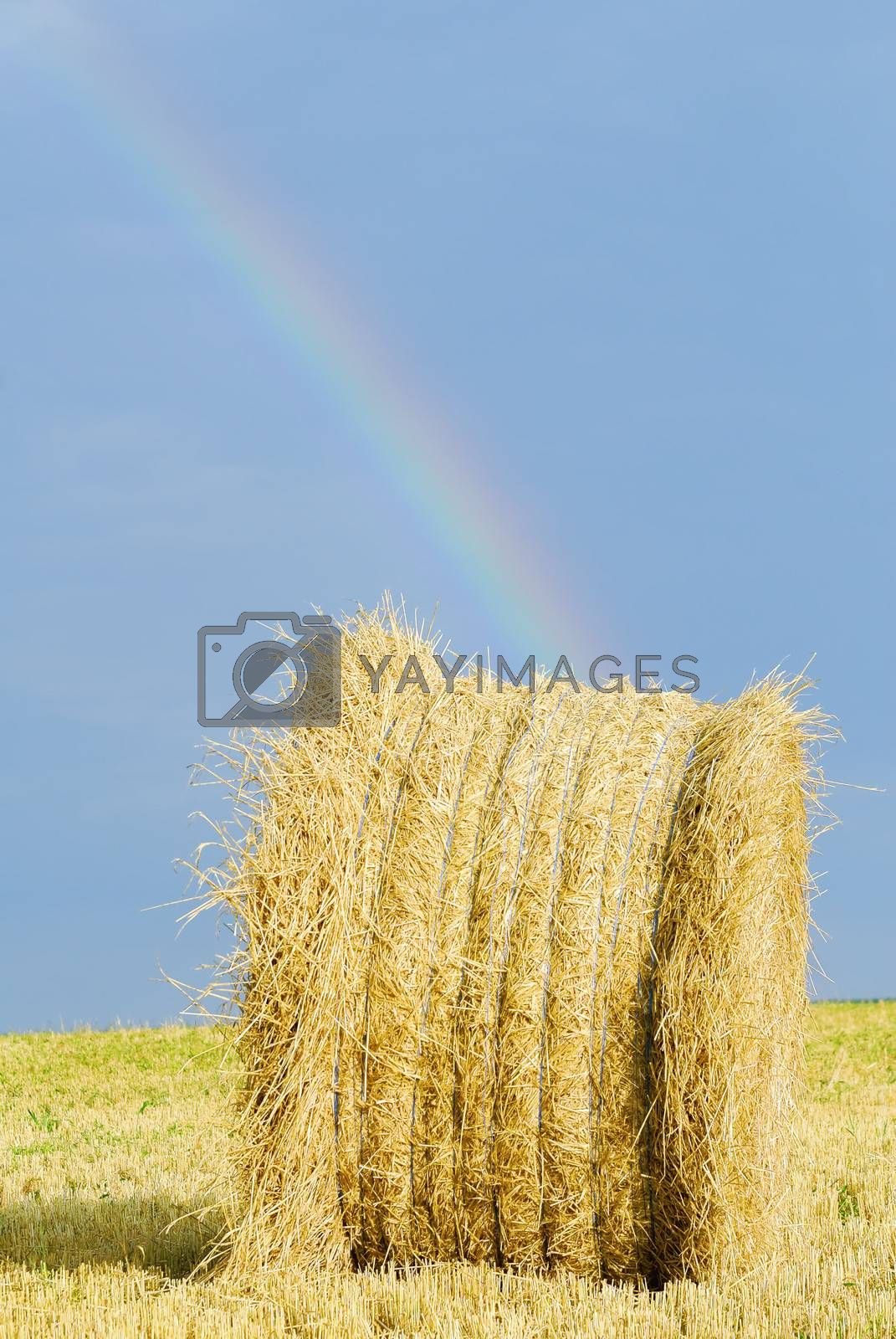 straw bale under stormy sky and rainbow
