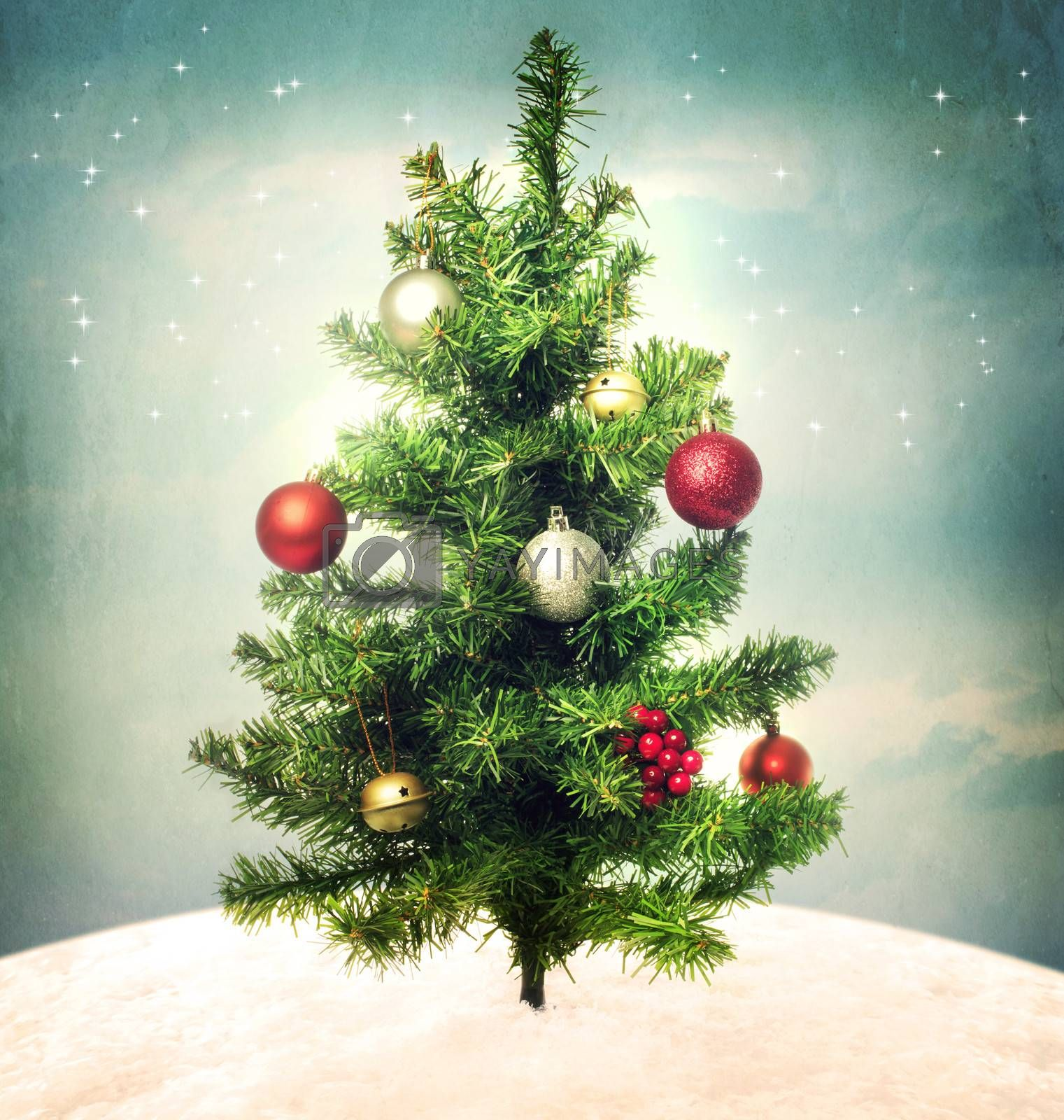 Royalty free image of Decorated Christmas tree on hilltop by melpomene