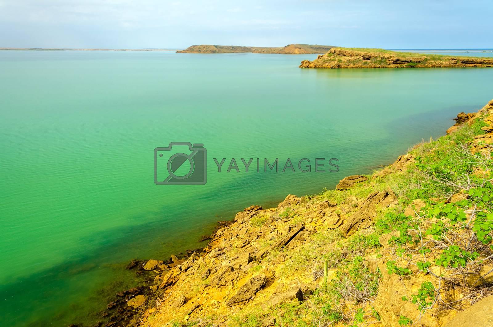 Barren islands in a green sea in La Guajira, Colombia
