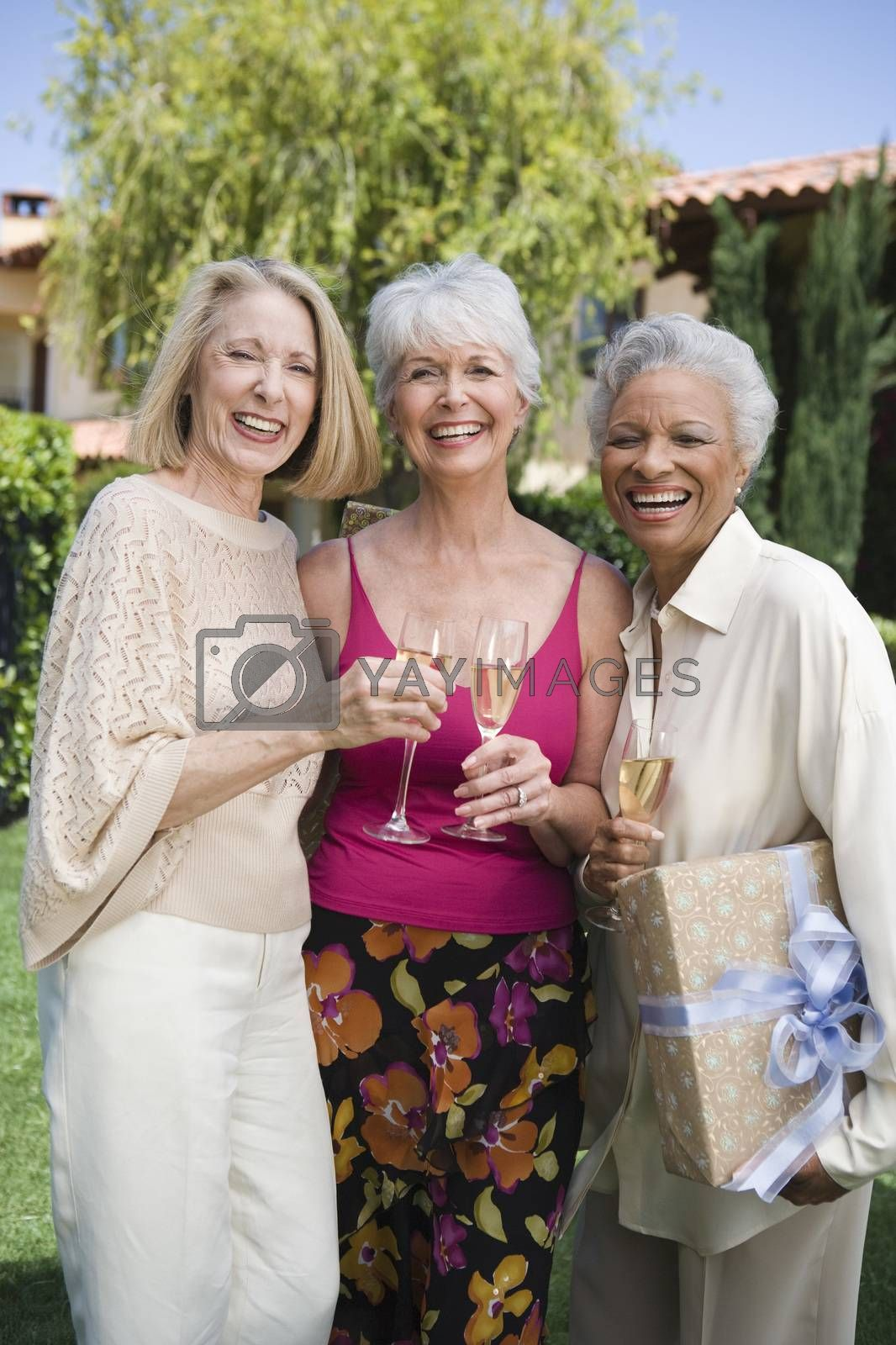 Happy Senior Female Friends Having Champagne