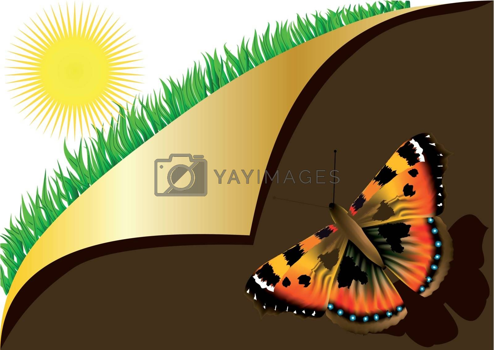 summer. abstract background with butterfly. 10 EPS