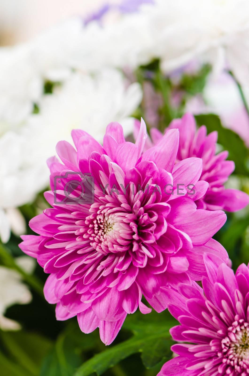 Summer flowers bouquet, close-up