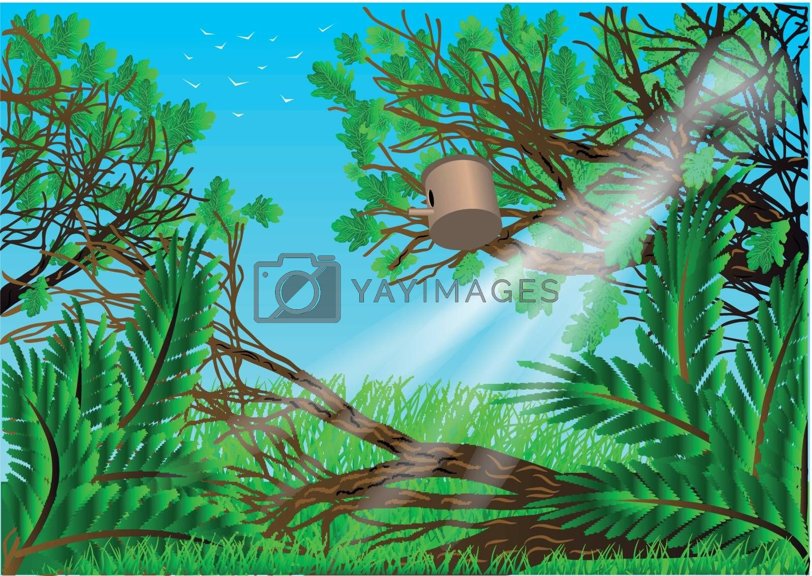 garden. summer background with trees and grass