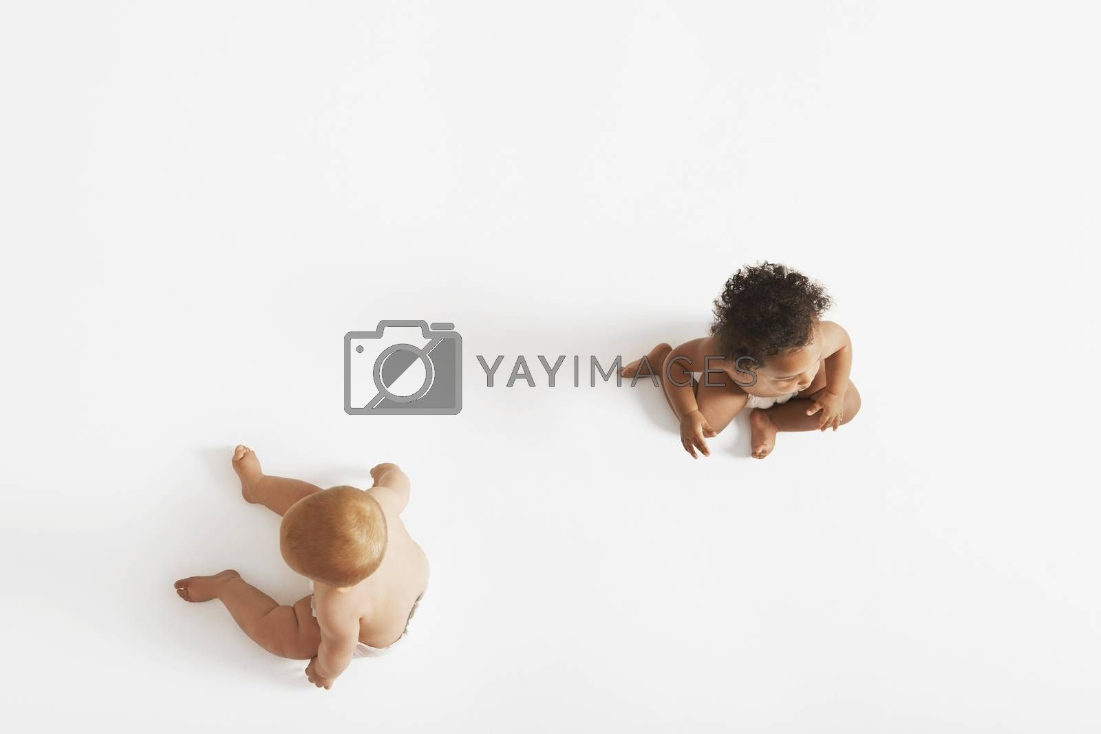 Two Babies On White Background