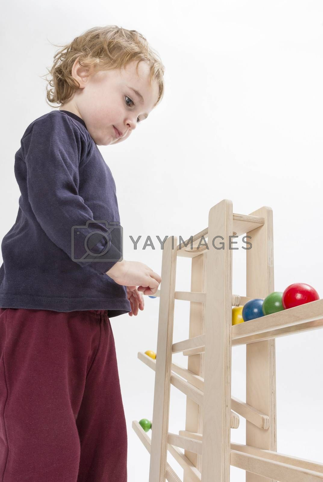 young child playing with wooden ball path. studio shot in grey background