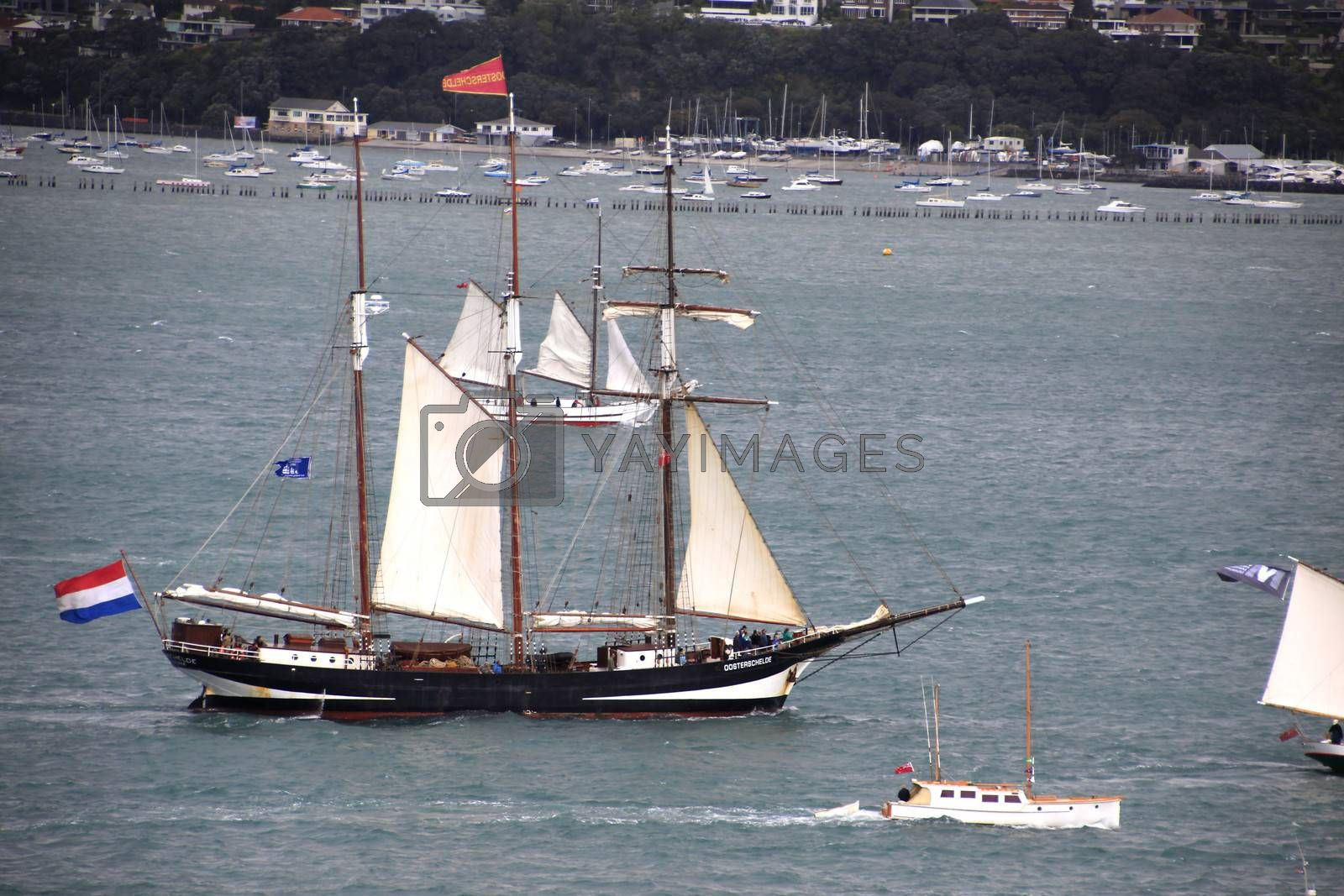 AUCKLAND-October 25: Tall ship Tecla of the Netherlands sailing in from Australia arriving in Waitemata Harbour in Auckland, New Zealand on Friday October 25, 2013.