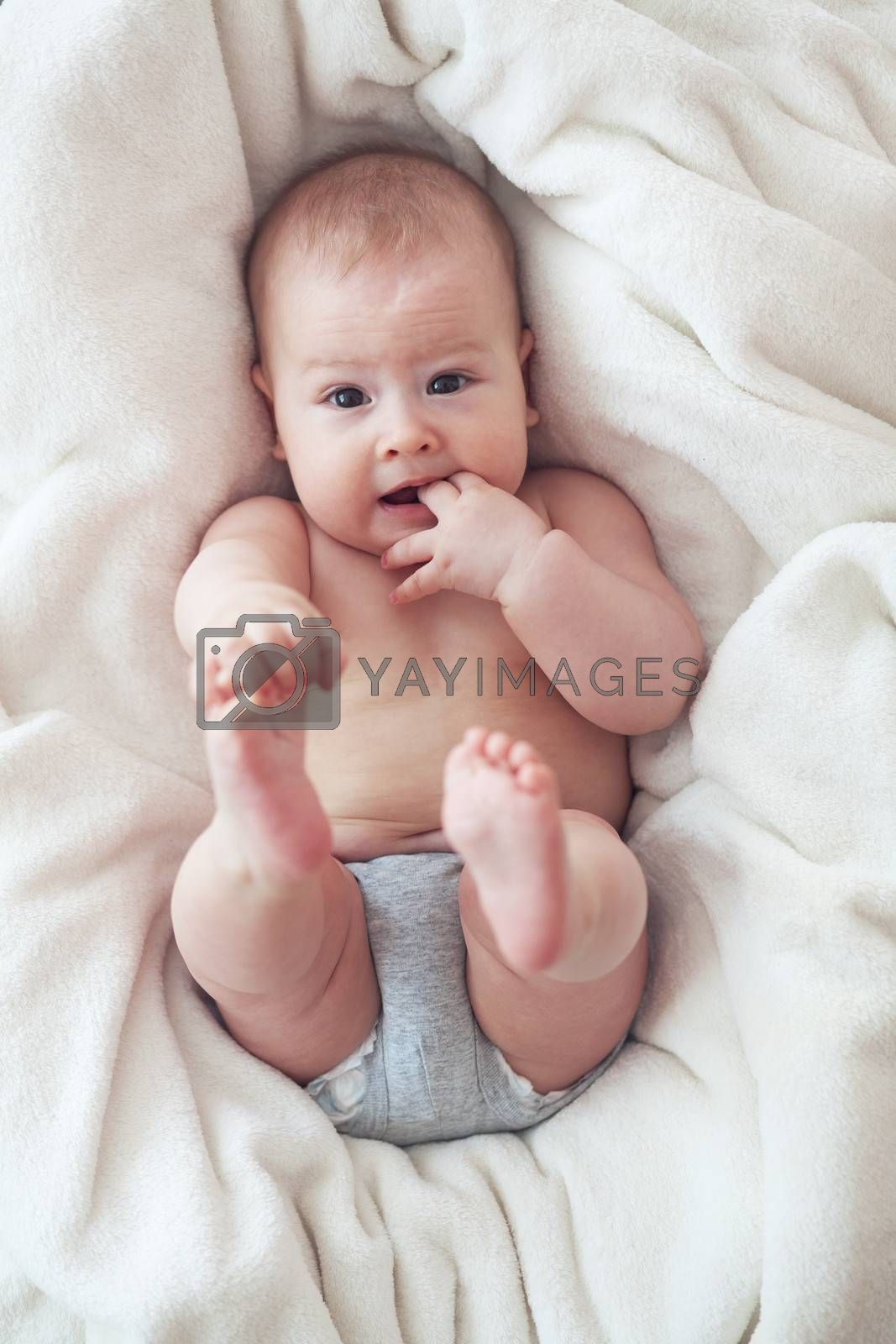 Portrait of a cute 6 months old baby