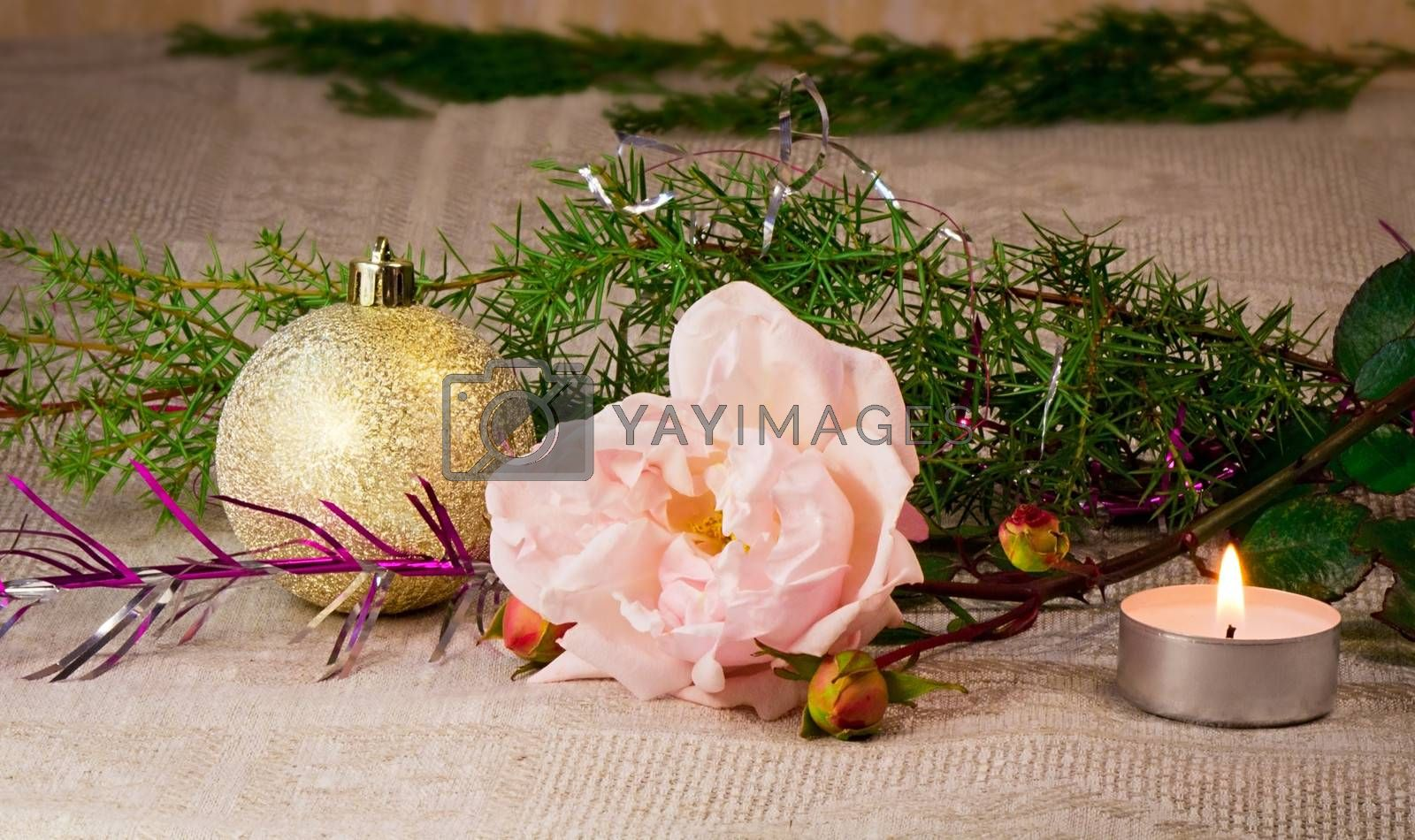 Beautiful shiny white ball , a candle, a rose, and the branches of a Christmas tree ornament.
