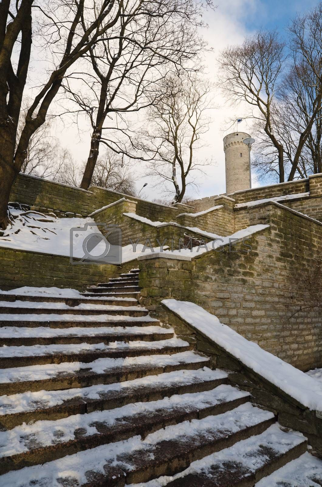 Stairs the leader on a medieval city wall in Tallinn