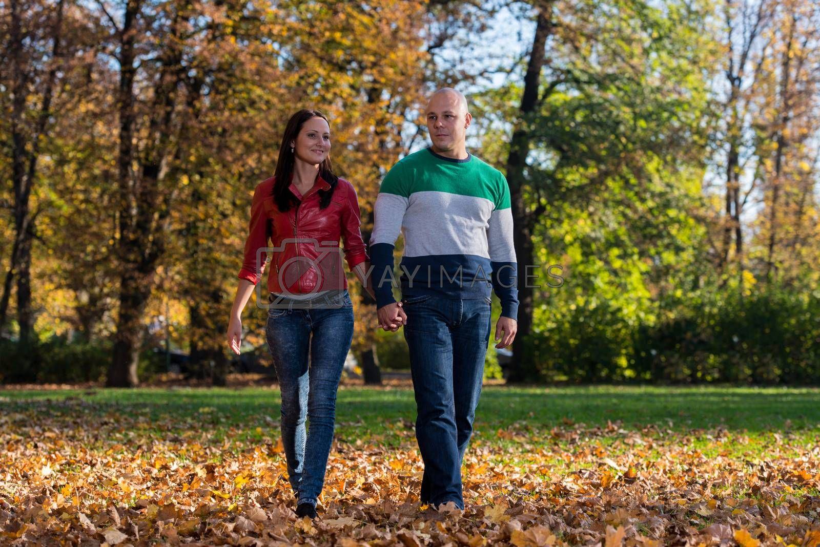 Couple Holding Hands and Walking in the Woods During