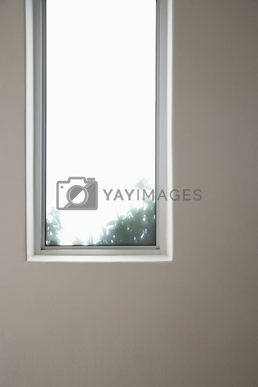 Elongated window of a house by moodboard