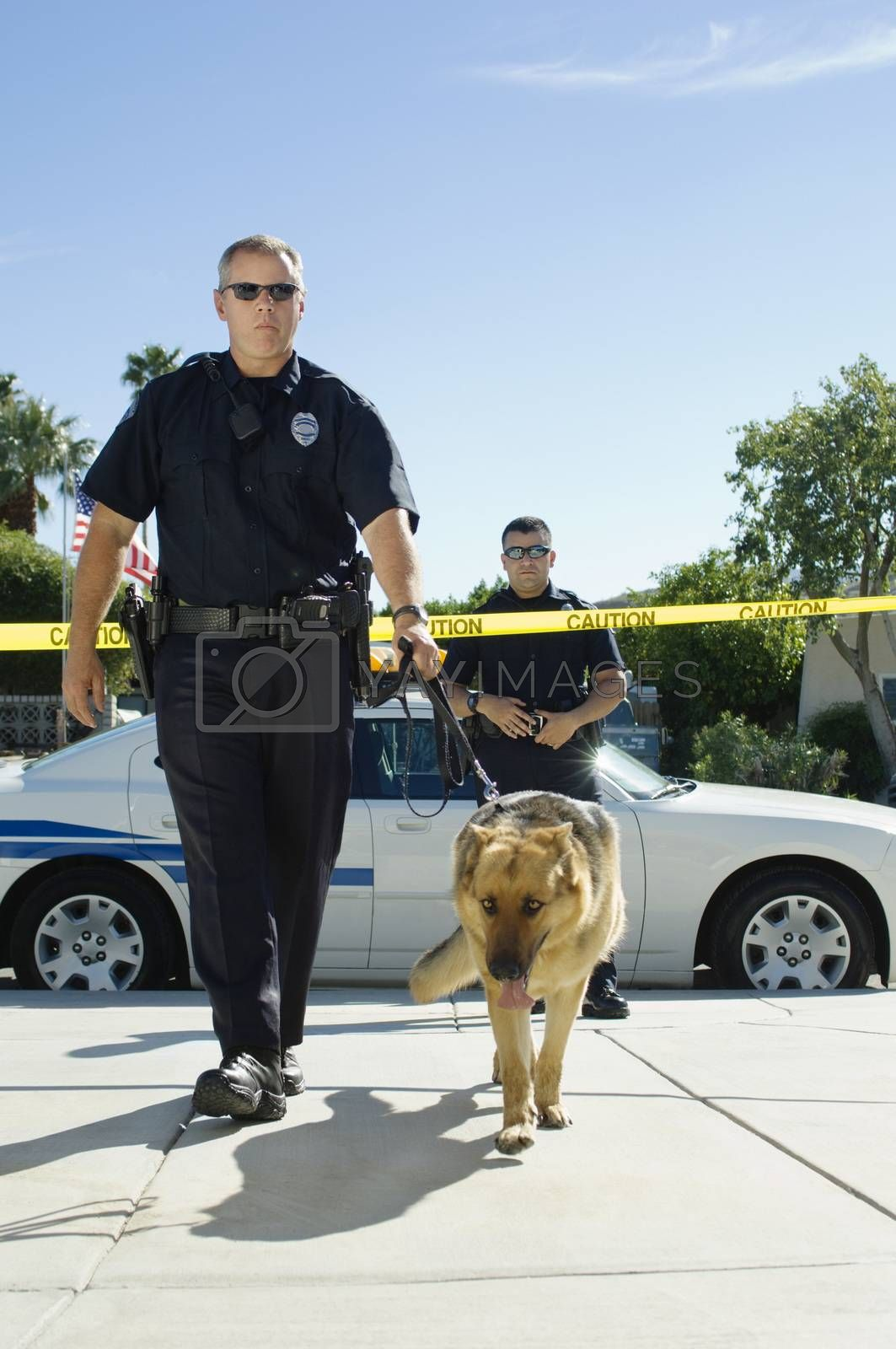 Police Officer With Dog
