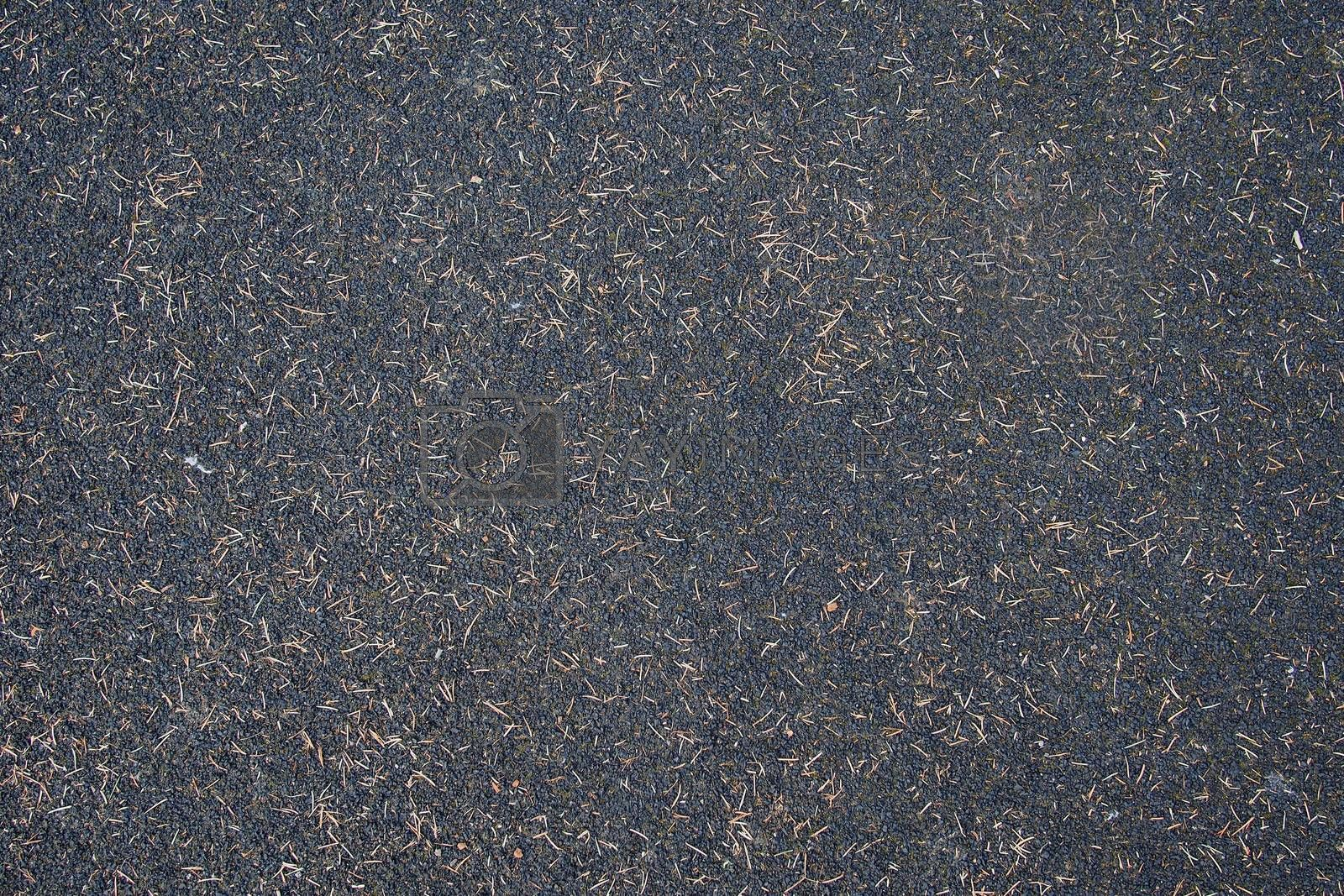 Closeup of seamless soil texture