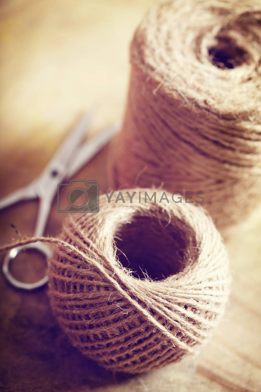 Royalty free image of Twine cord by melpomene