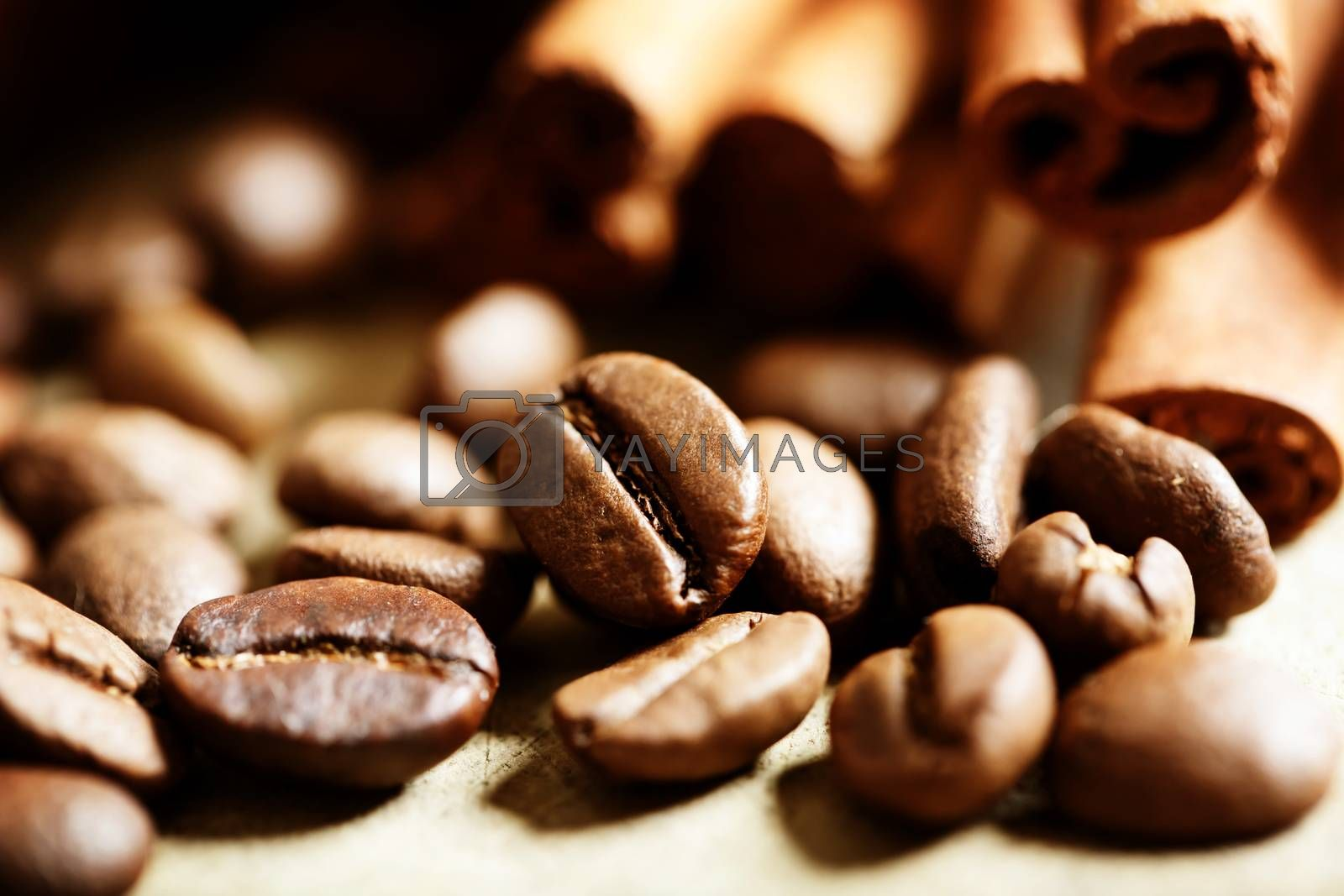 Royalty free image of Coffee beans with cinnamon sticks by melpomene