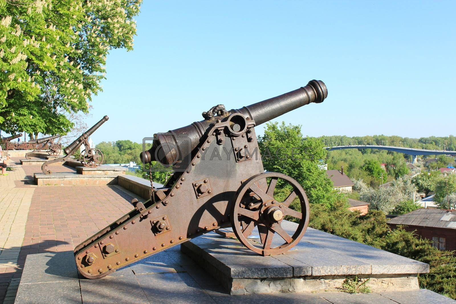 old cannons standing in central park of Chernigov