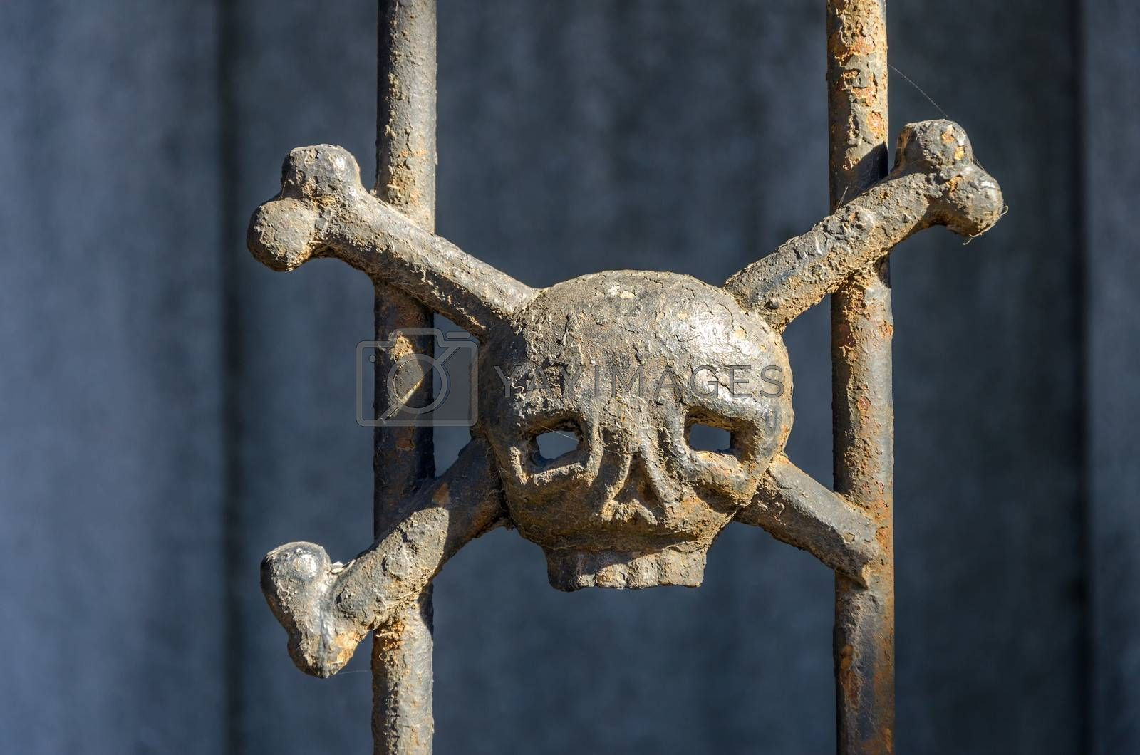 Iron skull and crossbones decorating a tomb in Recoleta cemetery in Buenos Aires, Argentina