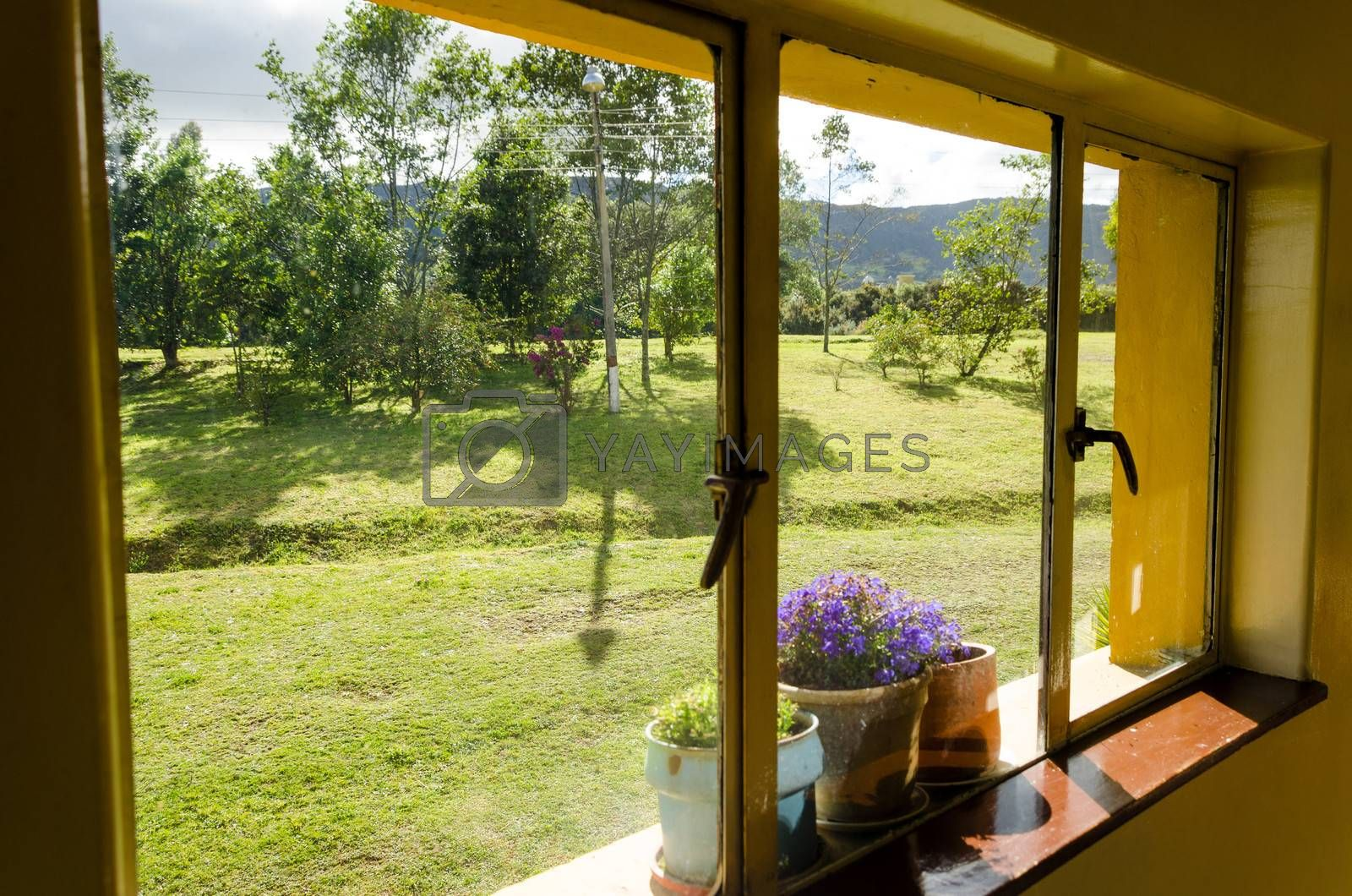 Windowsill and flowers in Neusa in Cundinamarca, Colombia