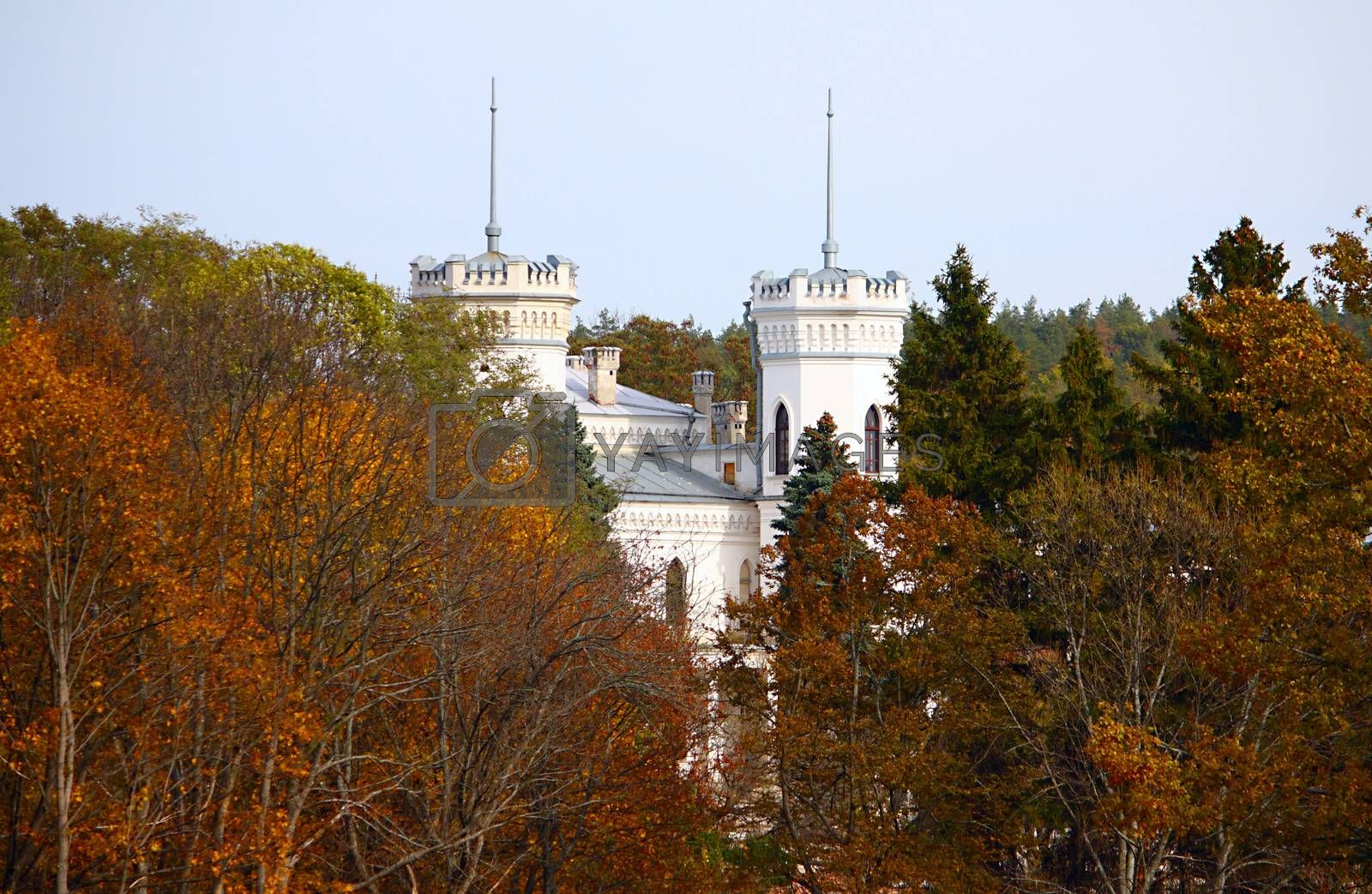 White castle near the autumn forest