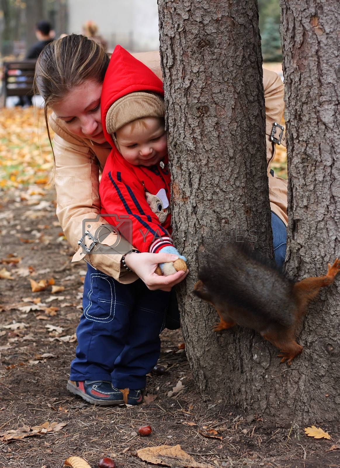 Little boy with mother feeds a squirrel in a park