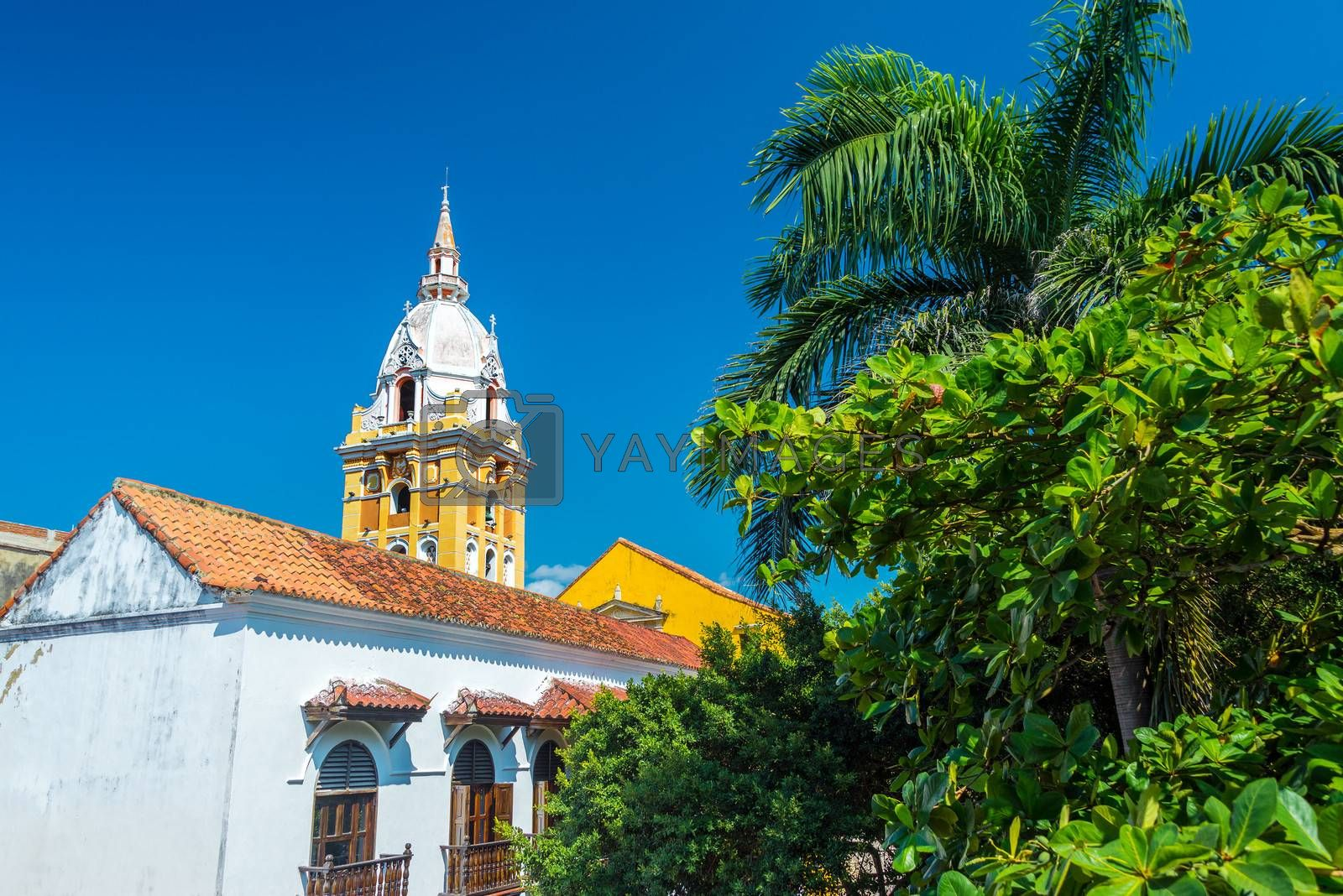Royalty free image of Cartagena Cathedral and Palm Tree by jkraft5