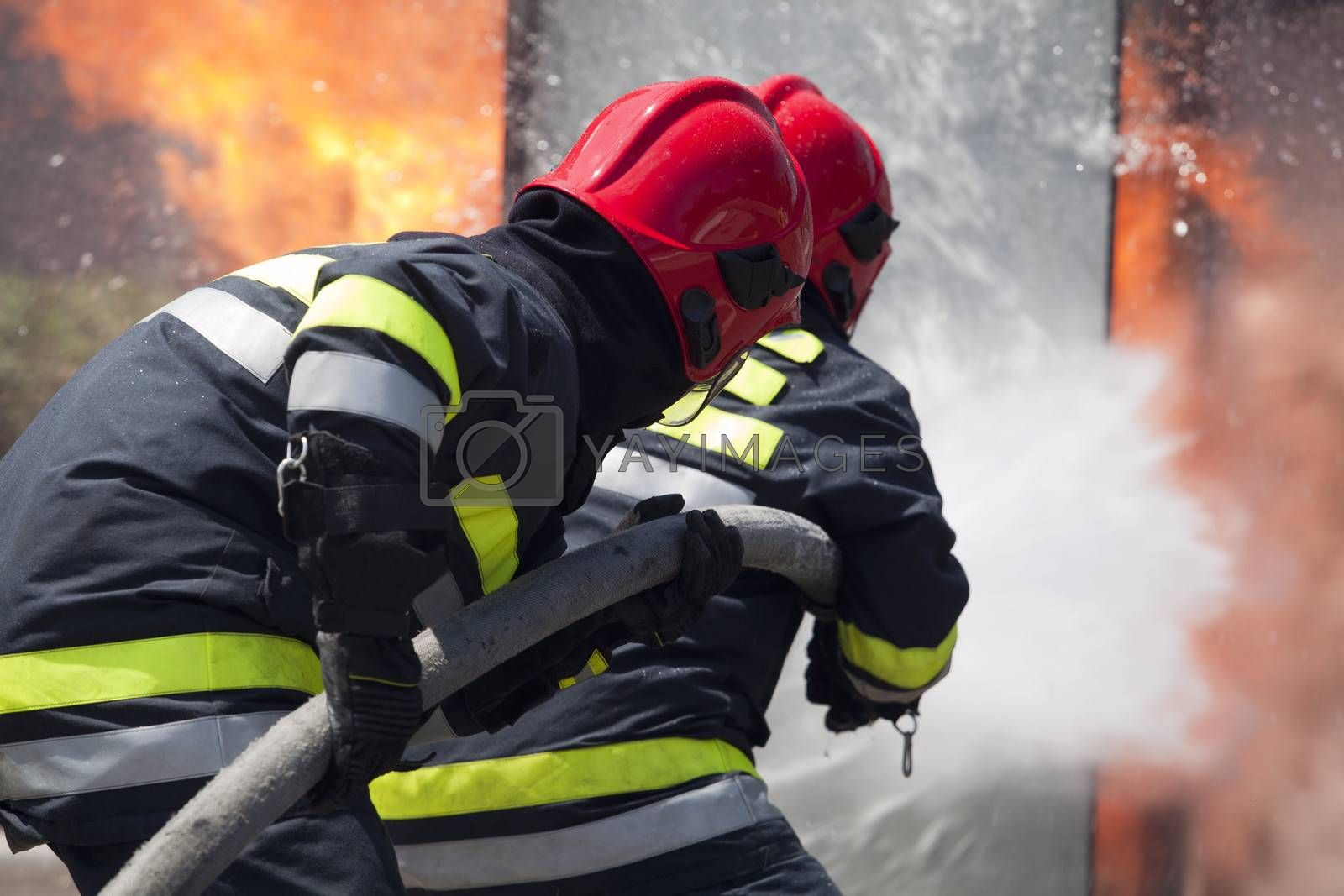 Royalty free image of Firefighters in action by wellphoto
