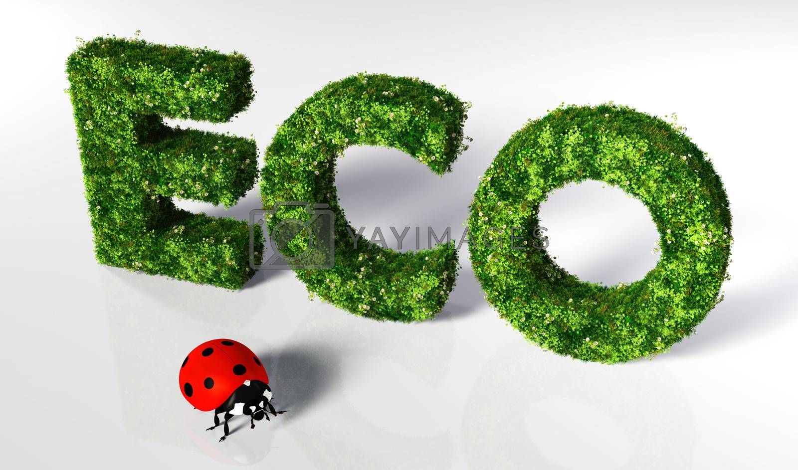 eco text covered by grass and flowers, and a small ladybug in front of it are on a white ground