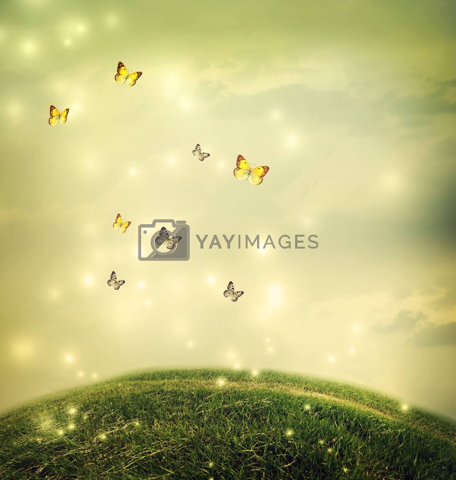 Royalty free image of Butterflies in the fantasy hilltop landscape by melpomene