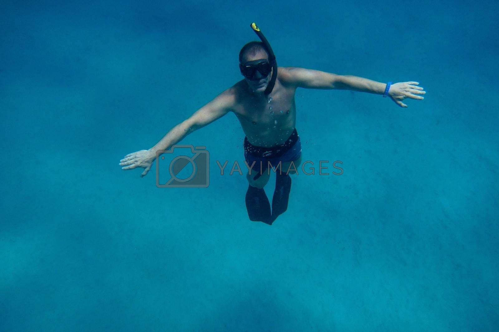 free diving in the blue sea and holiday in egypt