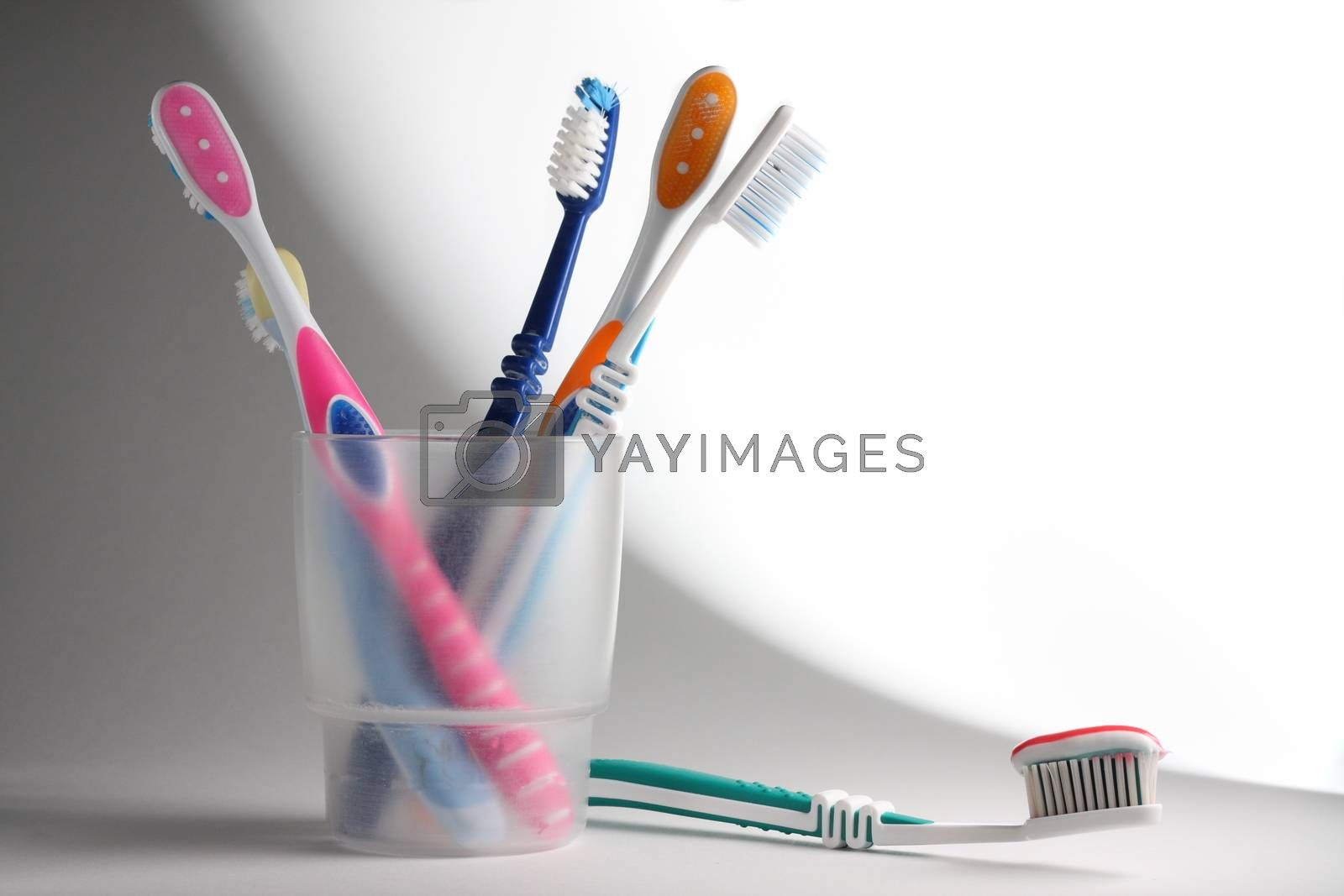 Some toothbrushes in a plastic glass