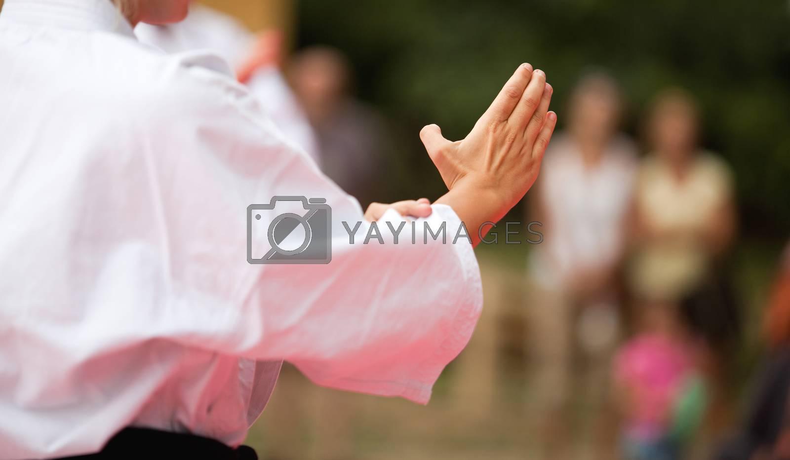 Karate hand position
