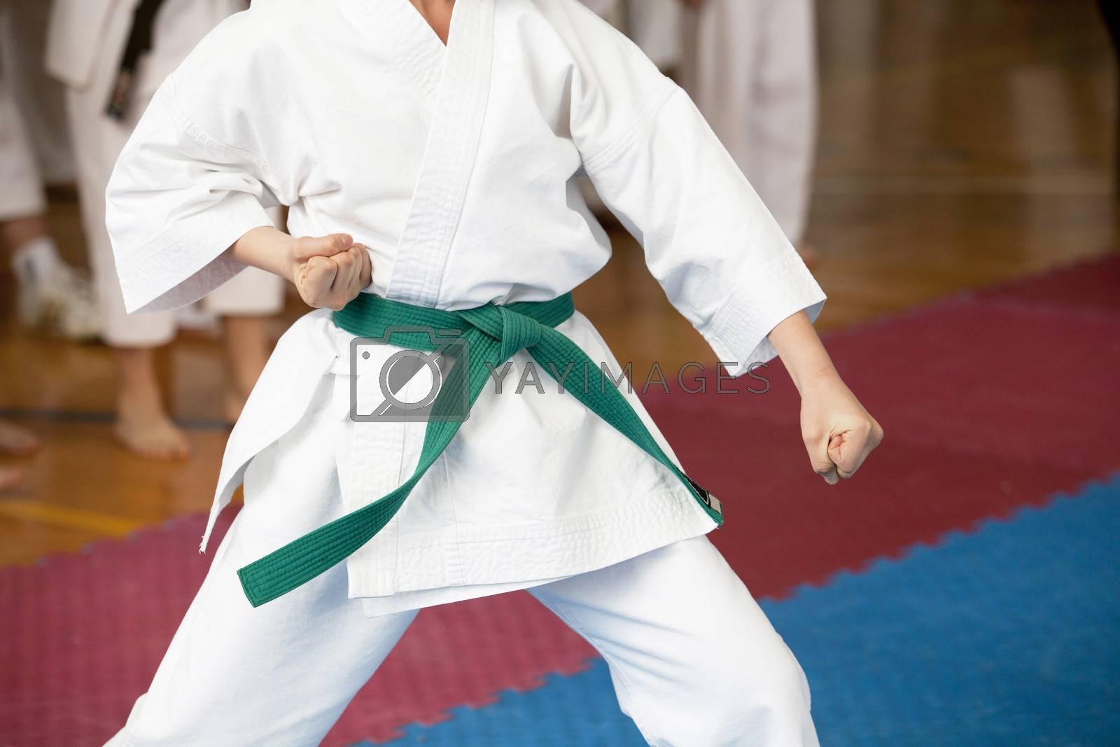 Karate position