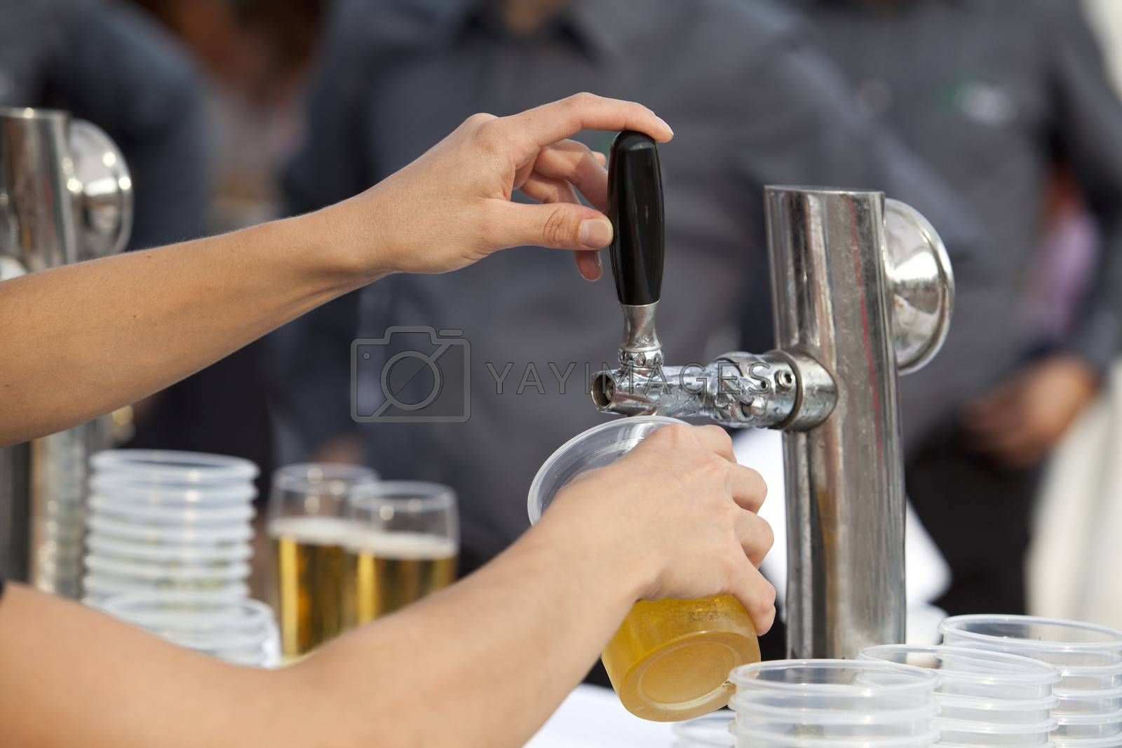 Royalty free image of Beer by wellphoto