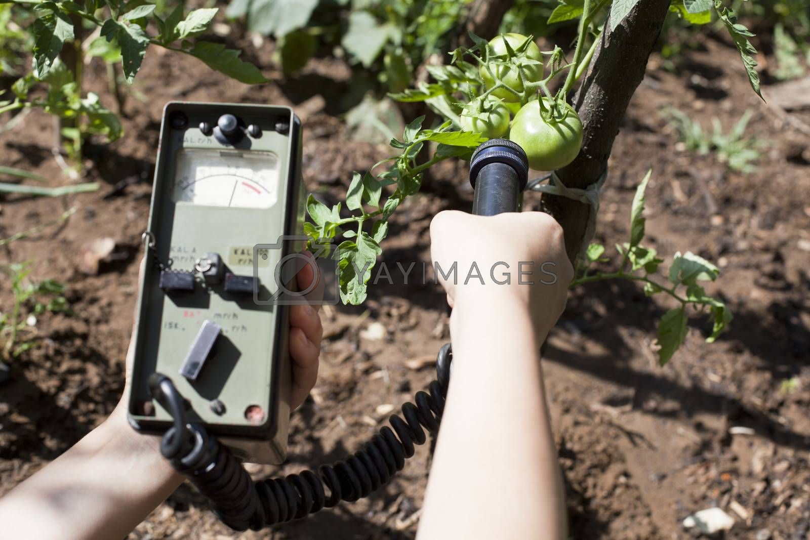 Royalty free image of Measuring radiation by wellphoto