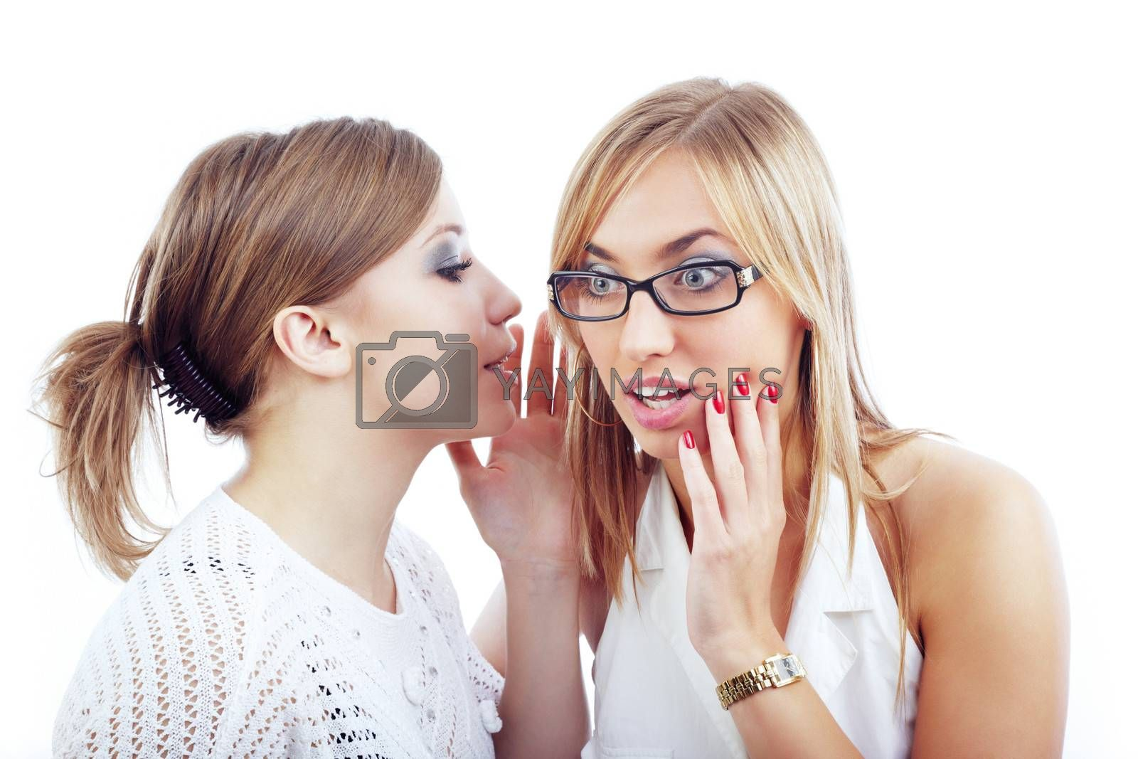 Two women communicating with each other