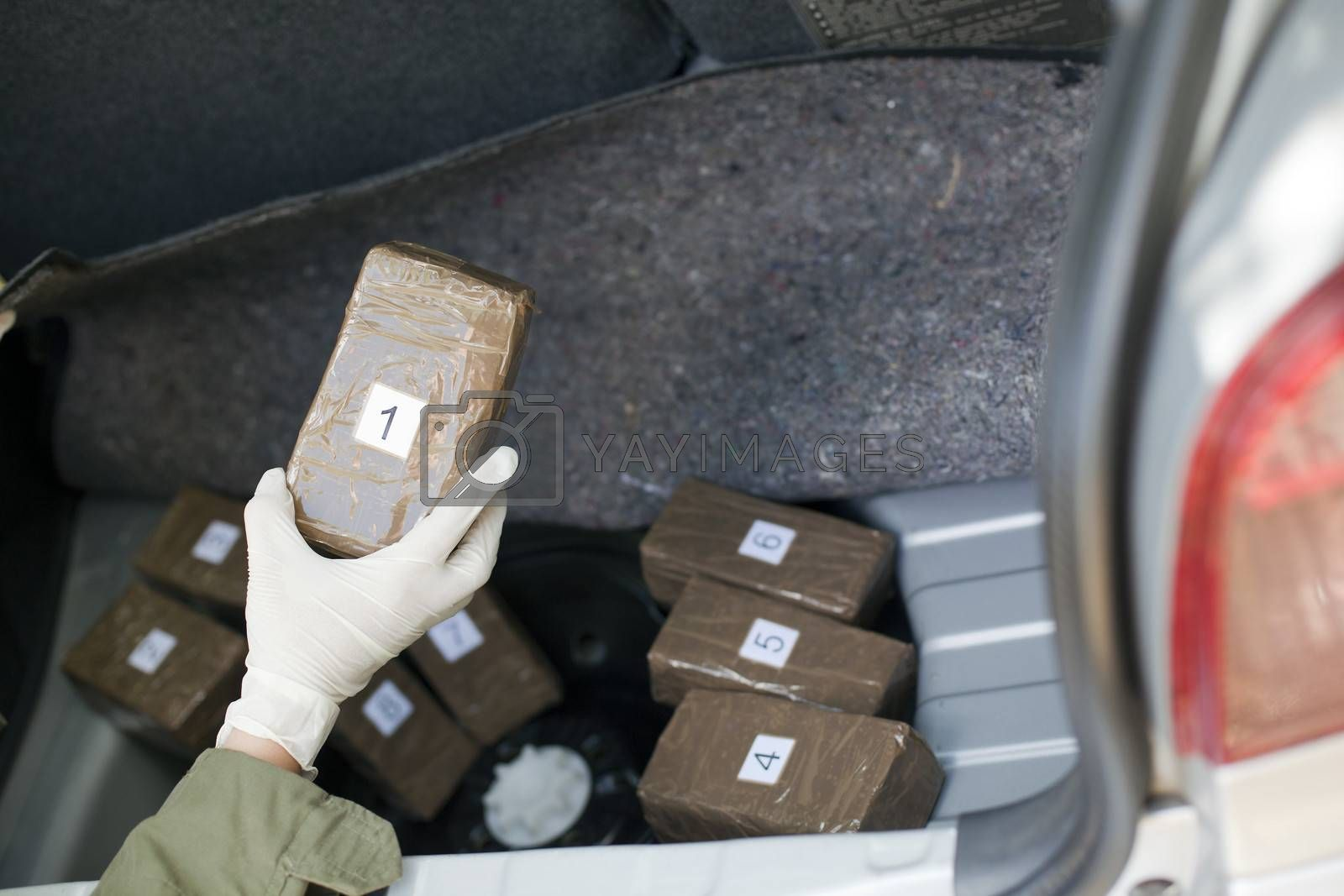 Cocaine packages in the trunk of a car