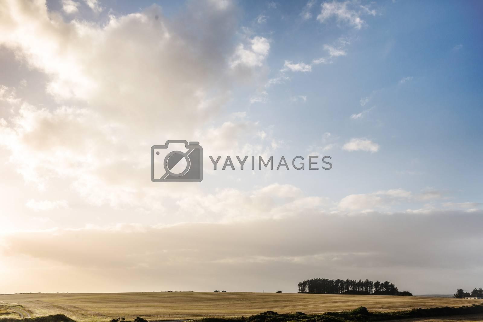Bright landscape