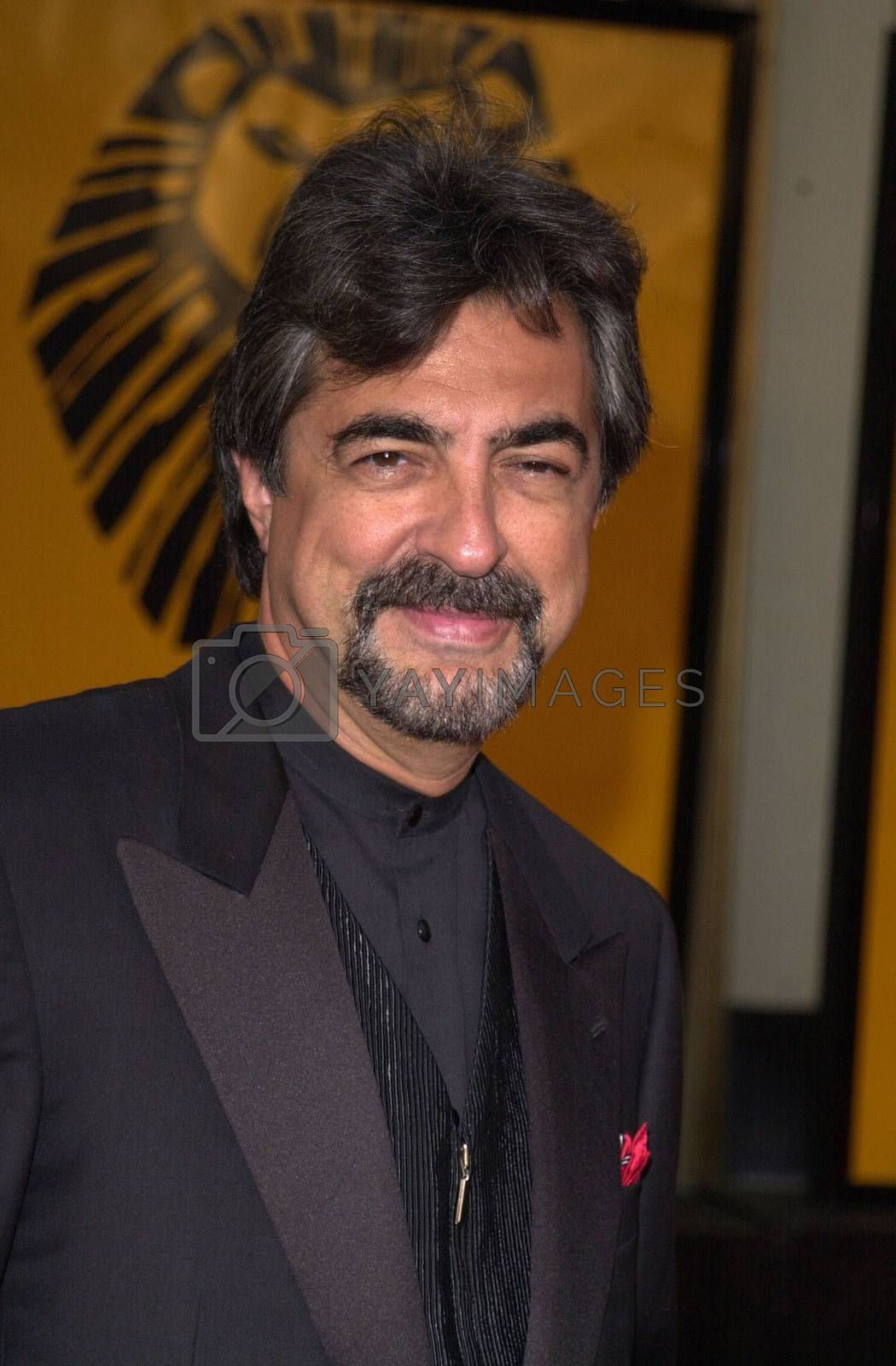 """Joe Mategna at a special presentation of Disney's """"The Lion King"""" benfitting the Karabo Foundation, Pantages Theater, 10-18-00"""