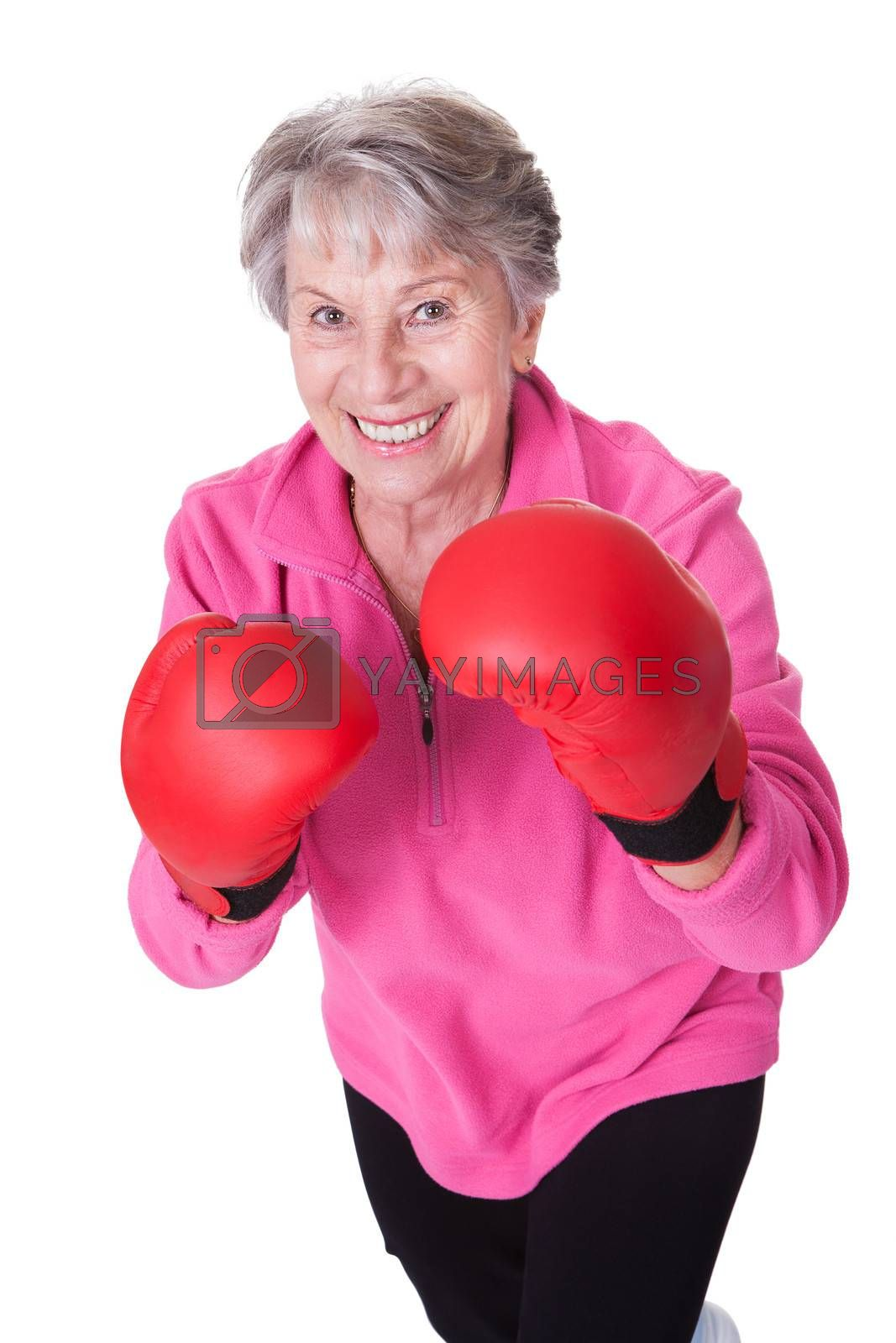 Portrait Of Senior Female Boxer Isolated On White Background