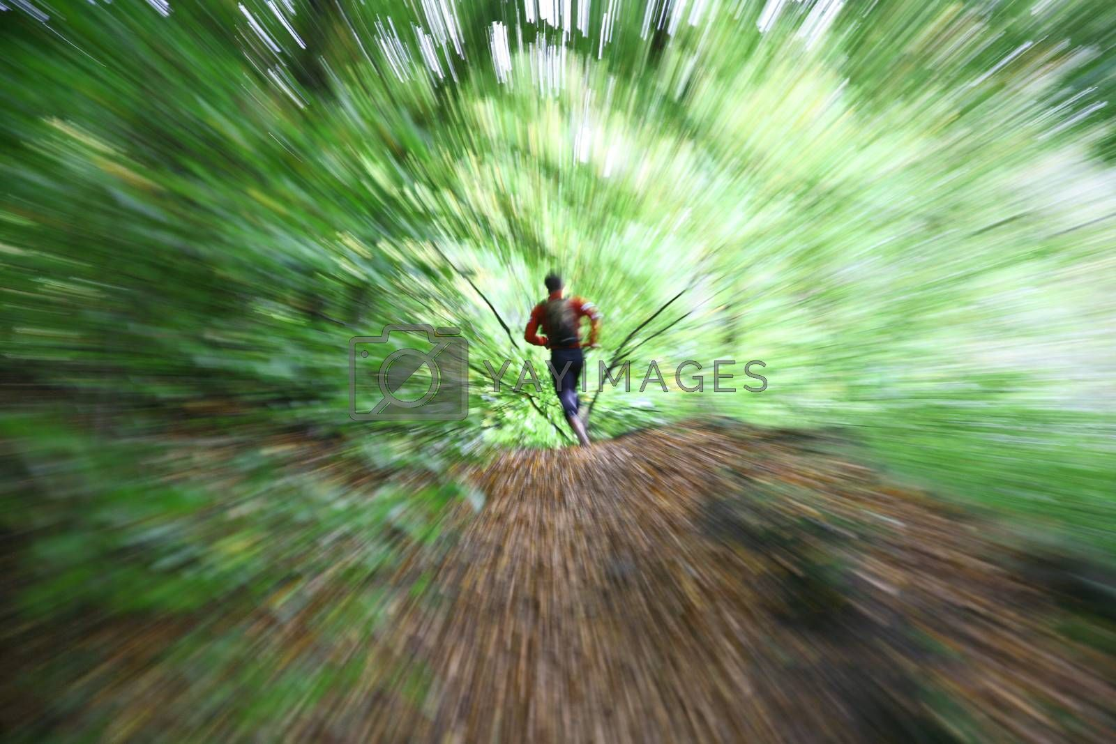 Man running in the forest: no manipulation: zooming on the man with camera on tripod