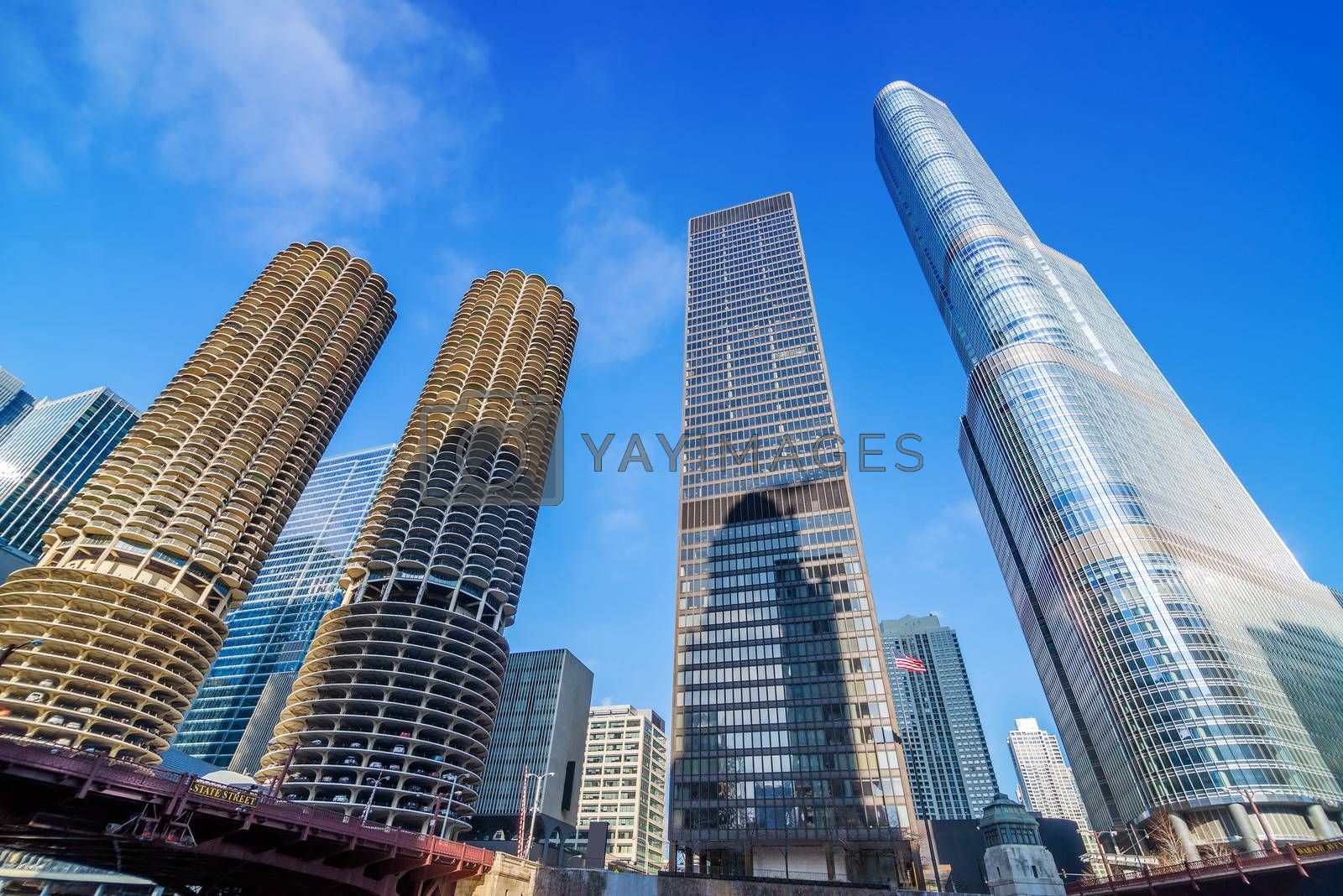 View of skyscrapers in downtown Chicago, USA