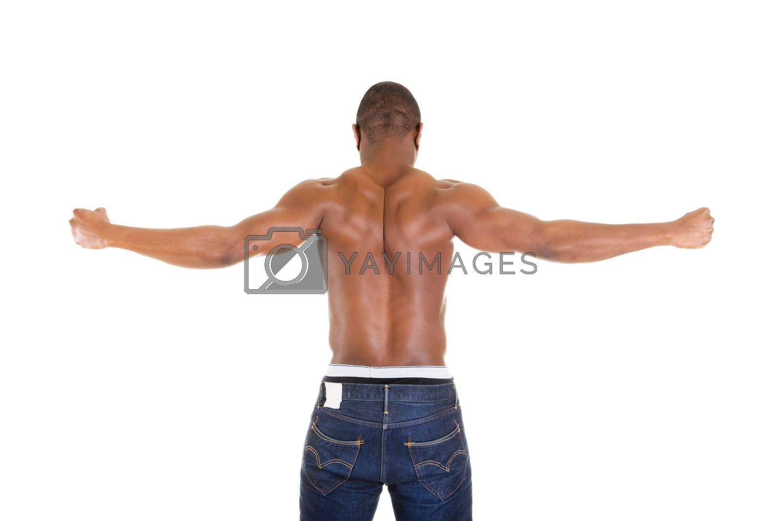 Muscular body, isolated on white