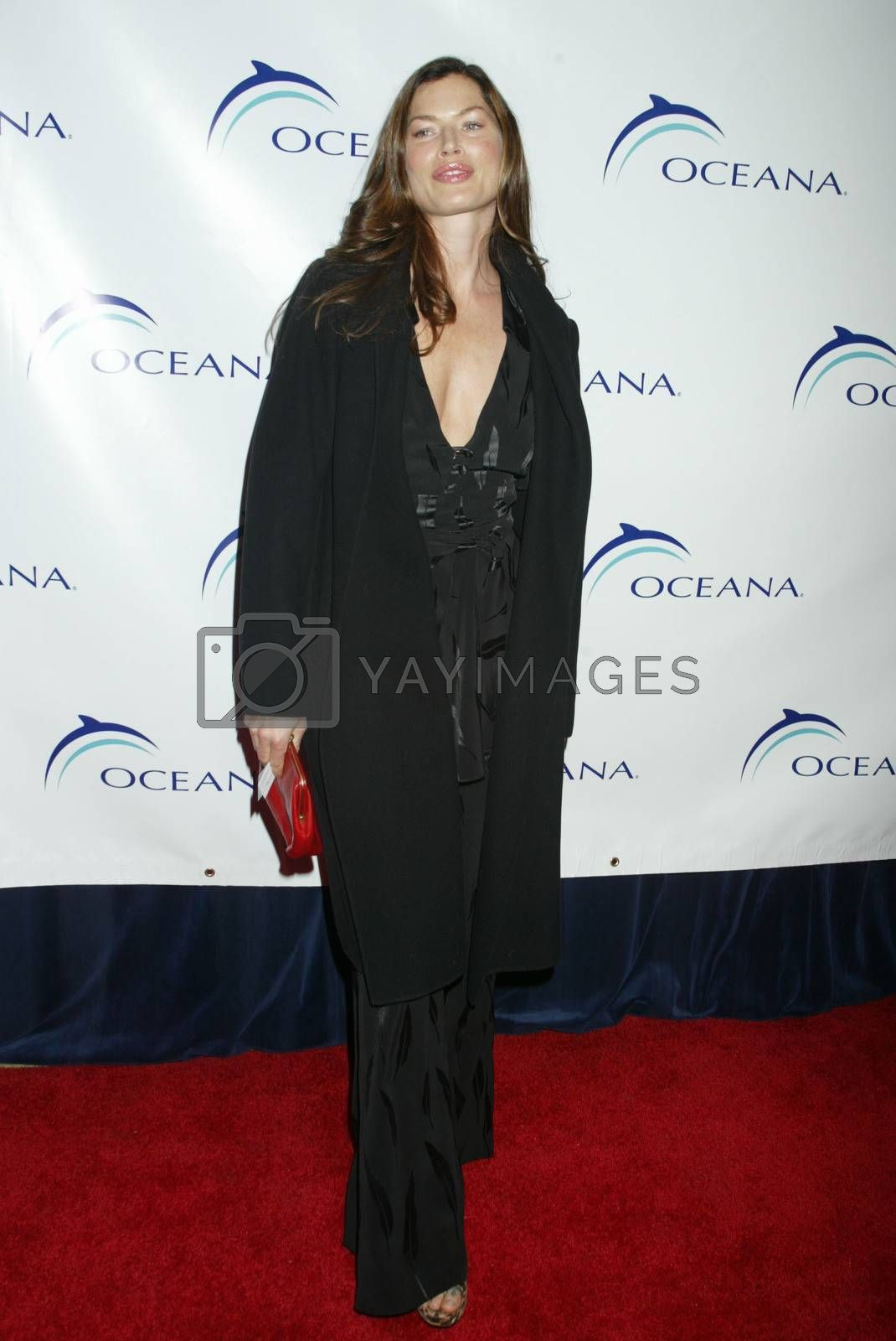 Royalty free image of 1st Annual Oceana Dinner by ImageCollect