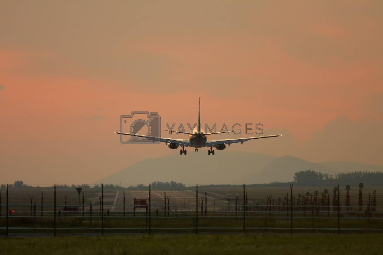 Royalty free image of Plane Landing by Gudella