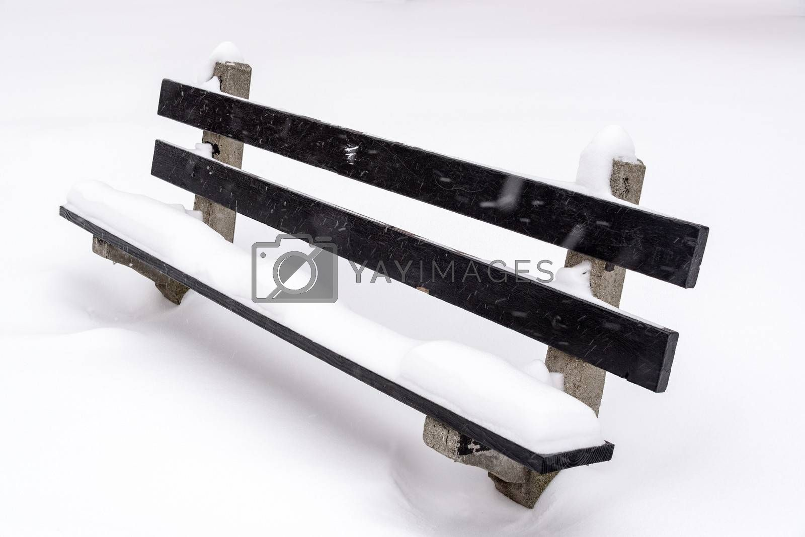 Royalty free image of Snow Covered Bench by jkraft5