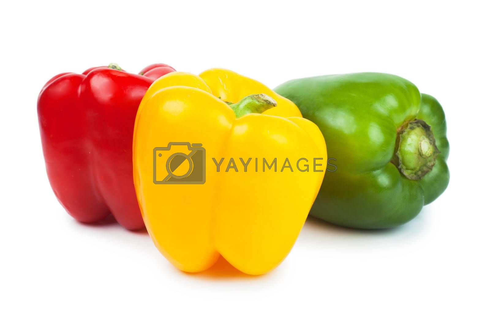 Three sweet peppers red, green and yellow over white background