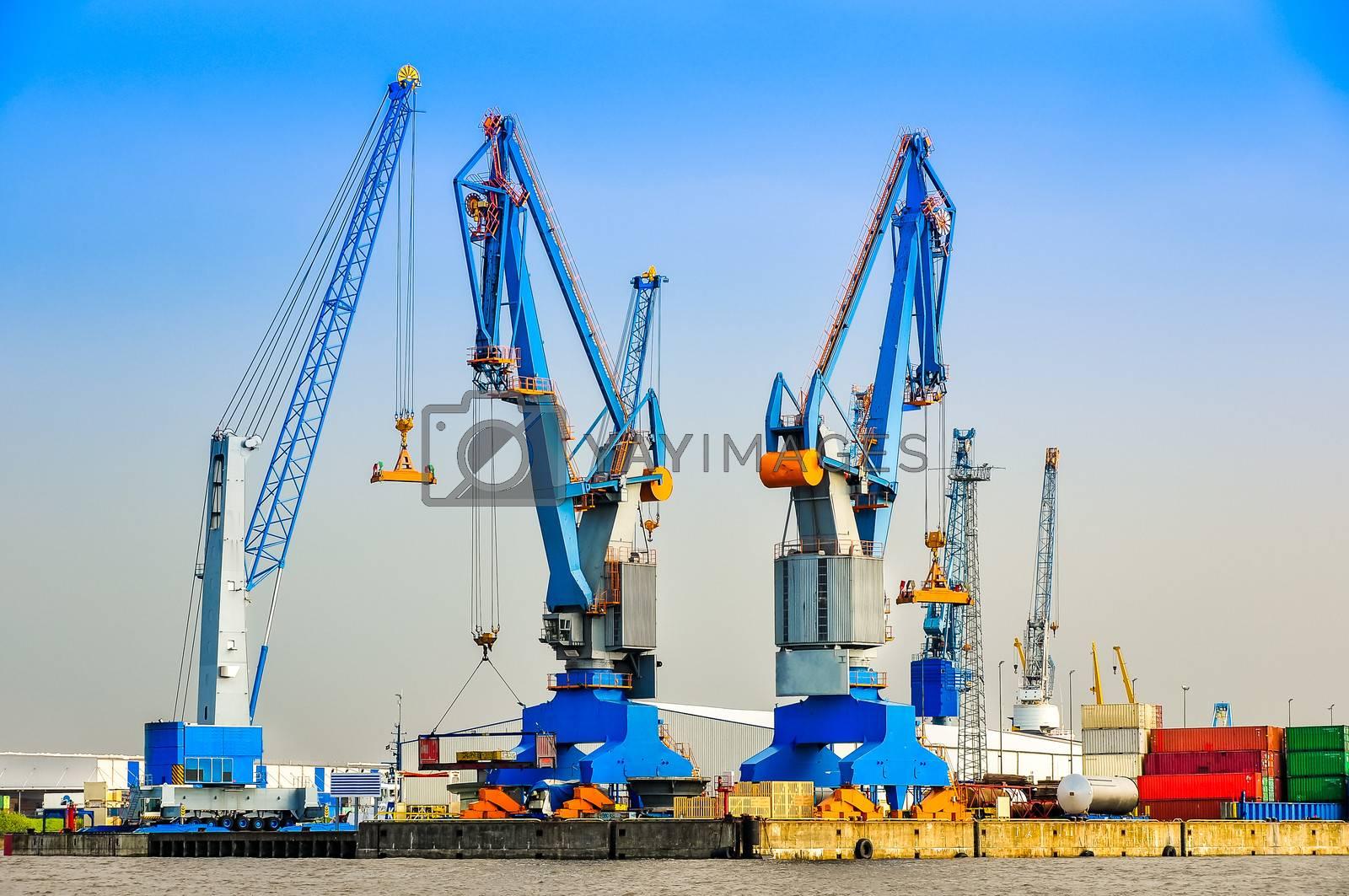 Large industrial cargo cranes in the sea harbor